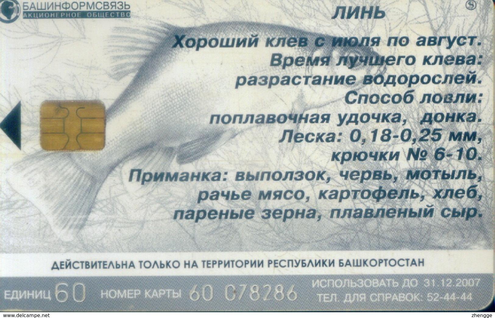 Russia Chip Cards, Fish ,60u (1pcs) - Russia