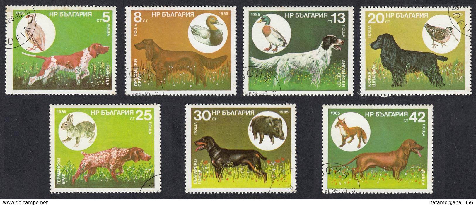 BULGARIA - 1985 - Serie Completa Usata: Yvert 2975/2981; 7 Valori; Cani Da Caccia Di Razze Diverse. - Gebraucht