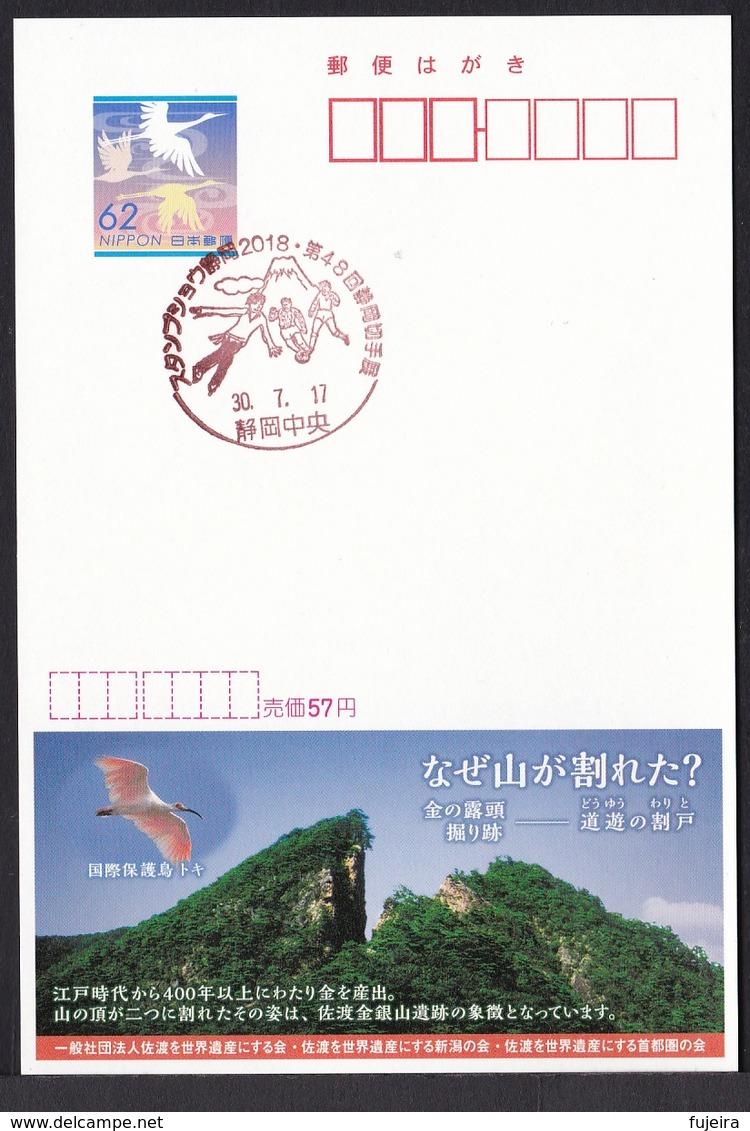 Japan Commemorative Postmark, Stamp Show Shizuoka Figure Skate Soccer Mt.Fuji (jca686) - Other