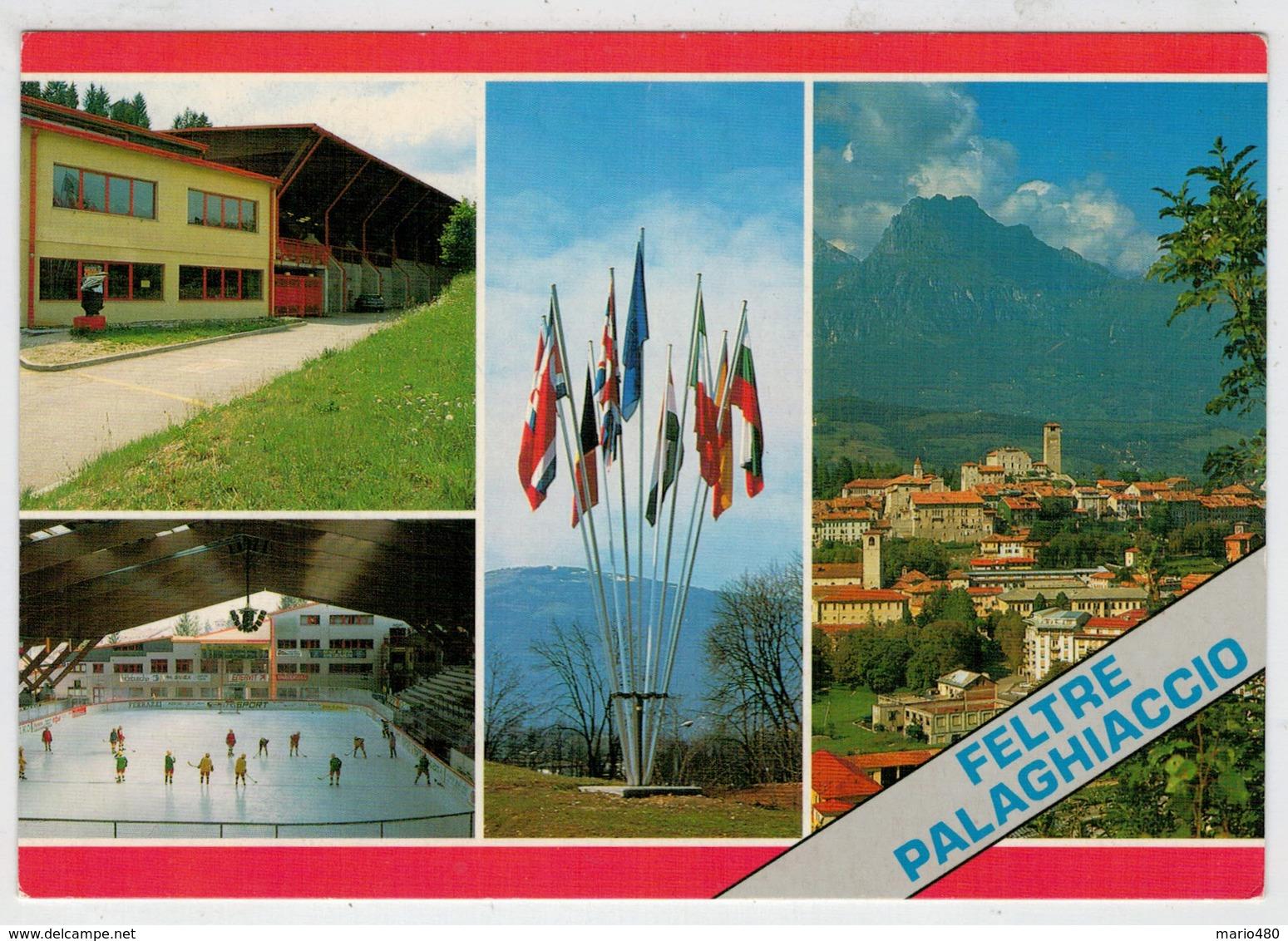 FELTRE  (BL)    PALAGHIACCIO  E  PANORAMA       (NUOVA) - Italia