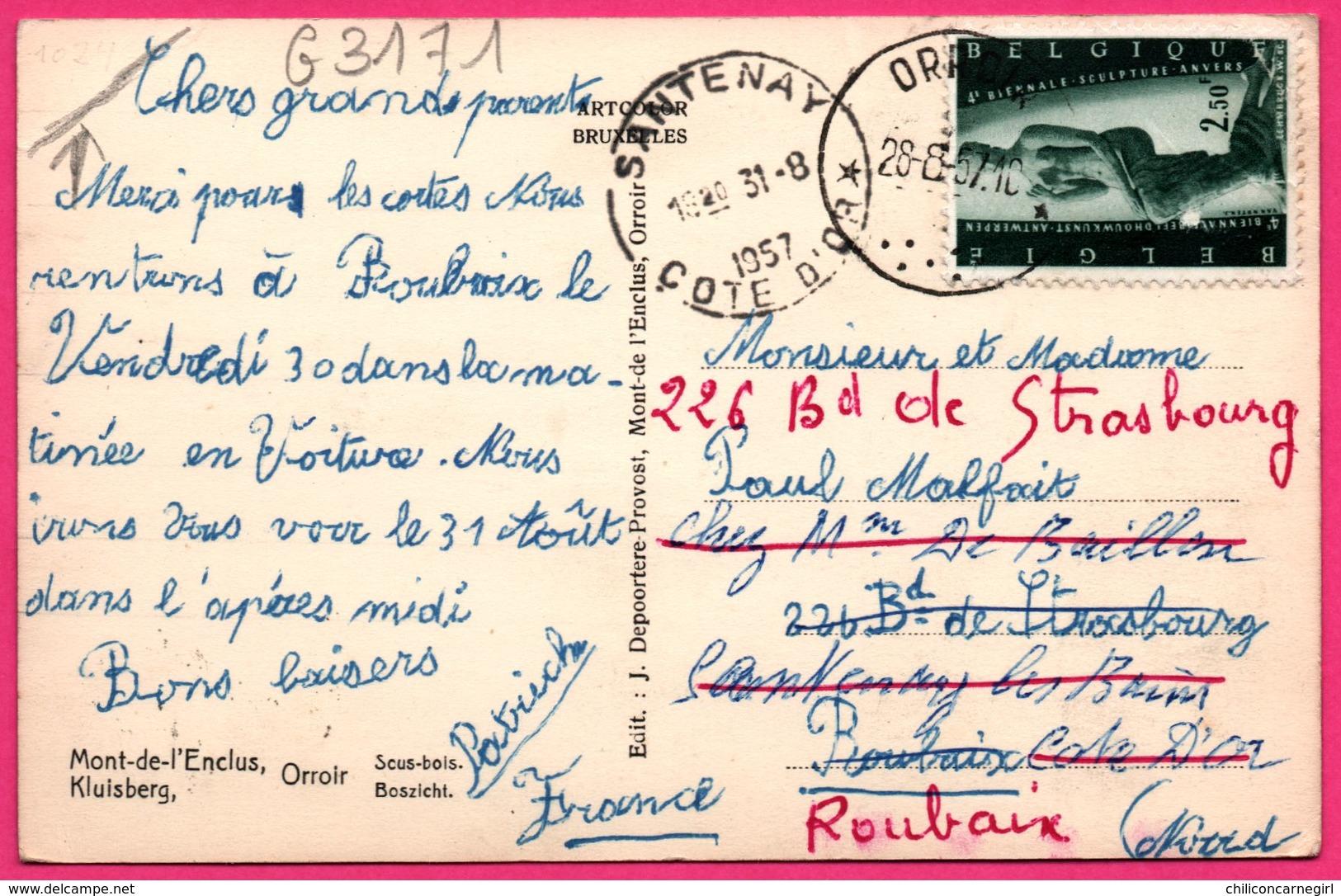 Cp Glacée - Mont De L'Enclus - Orroir - Sous Bois - Kluisberg - Boszicht - Edit. J. DEPOORTERE PROVOST - 1957 - Mont-de-l'Enclus