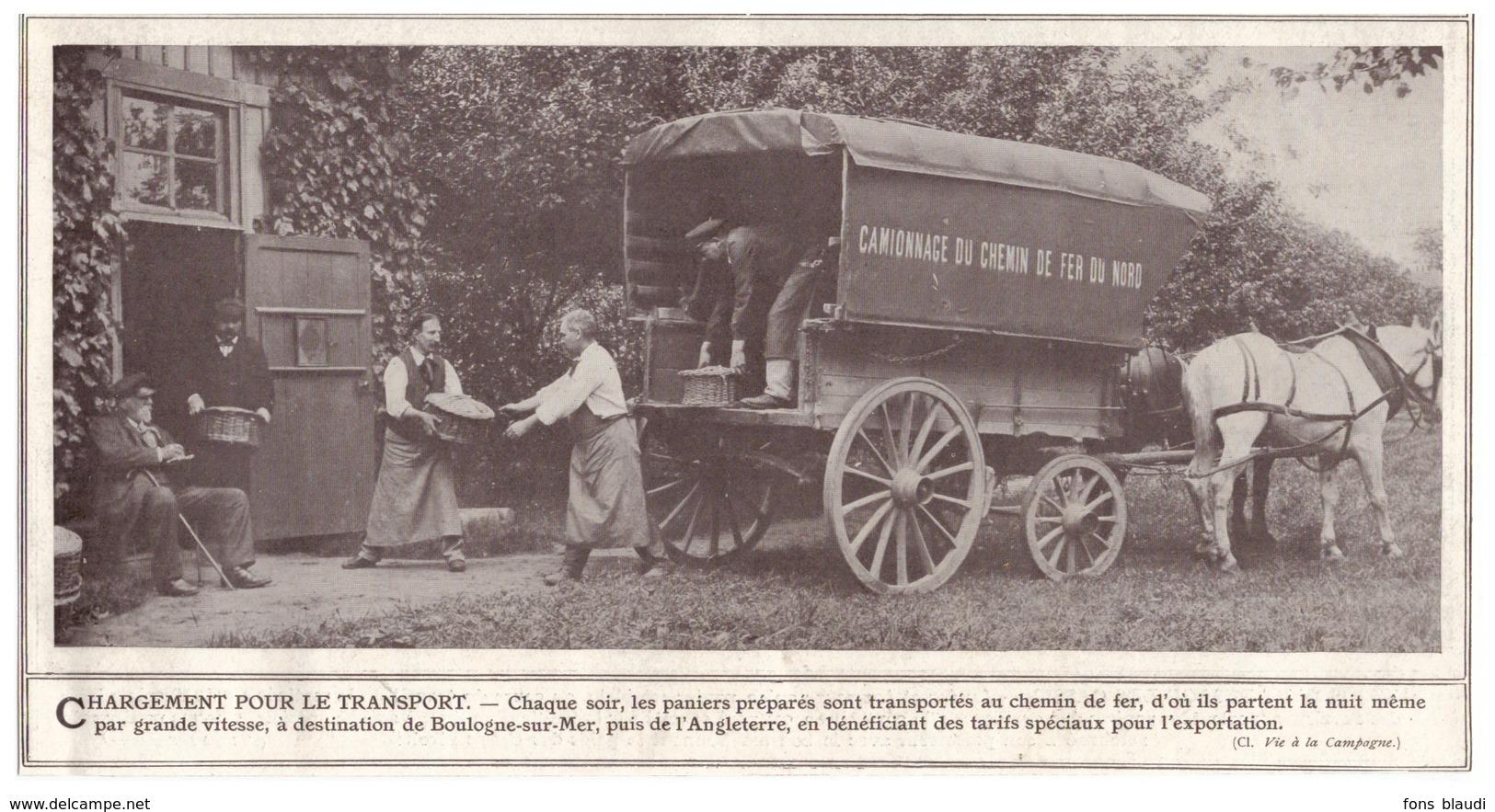 1908 - Iconographie -  Clermont (Oise) Le Transport Des Cassis - Ferme Fruitière Jules Labitte - FRANCO DE PORT - Vieux Papiers