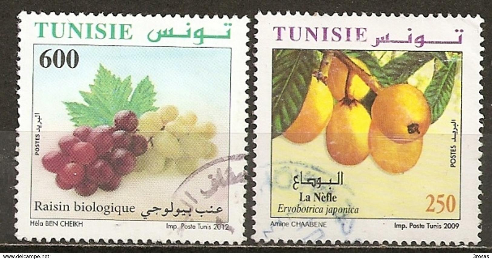 Tunesie Tunesia 2012 Raisin Biologique Grapes Etc Obl - Tunisie (1956-...)