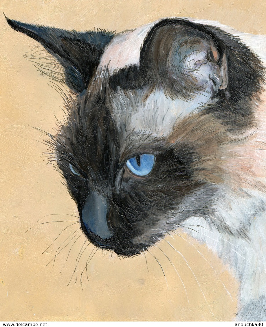 PEINTURE ACRYLIQUE SIGNEE MAEXI CHAT SIAMOIS - Acryliques