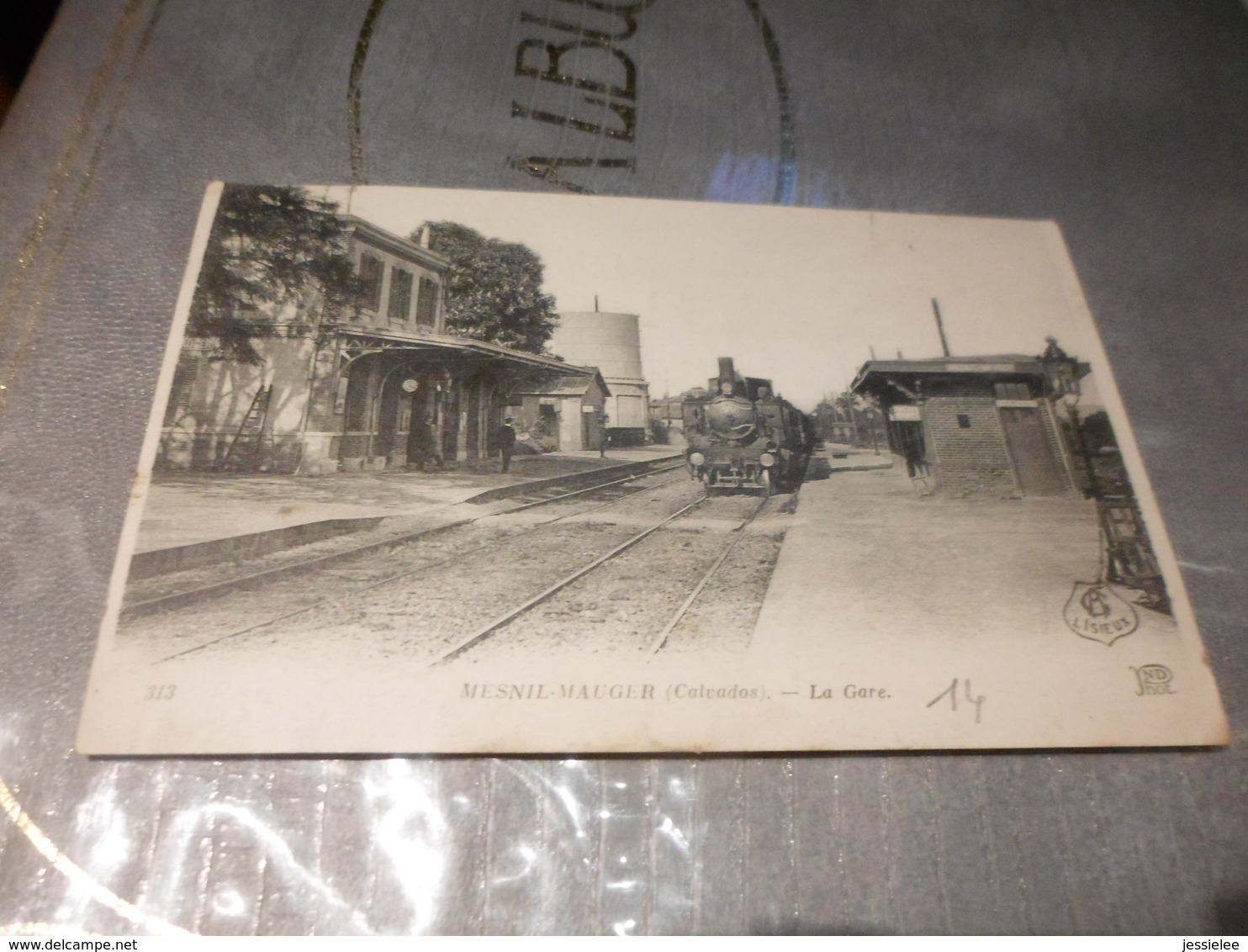 CPA ANIMEE - LA GARE DE MESNIL MAUGER - Stations With Trains
