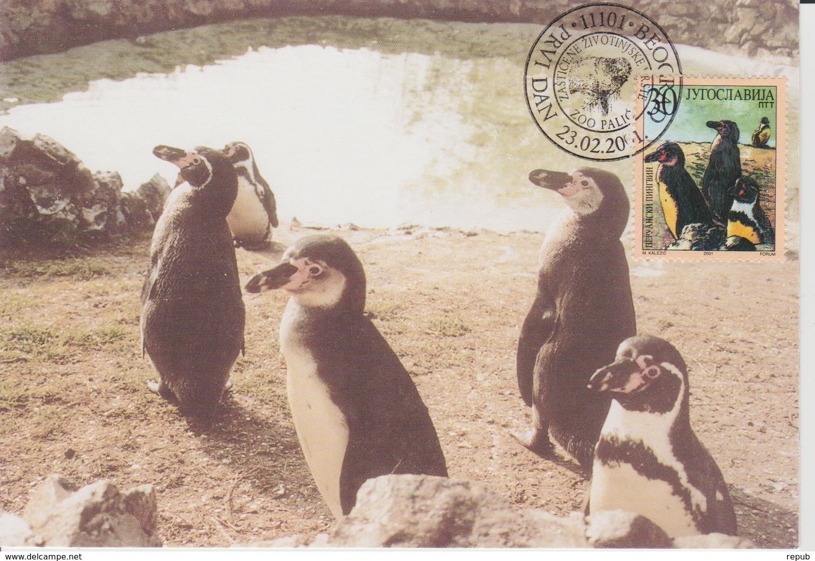 Yougoslavie Carte Maximum Oiseaux 2001 Manchots 2863 - Cartes-maximum