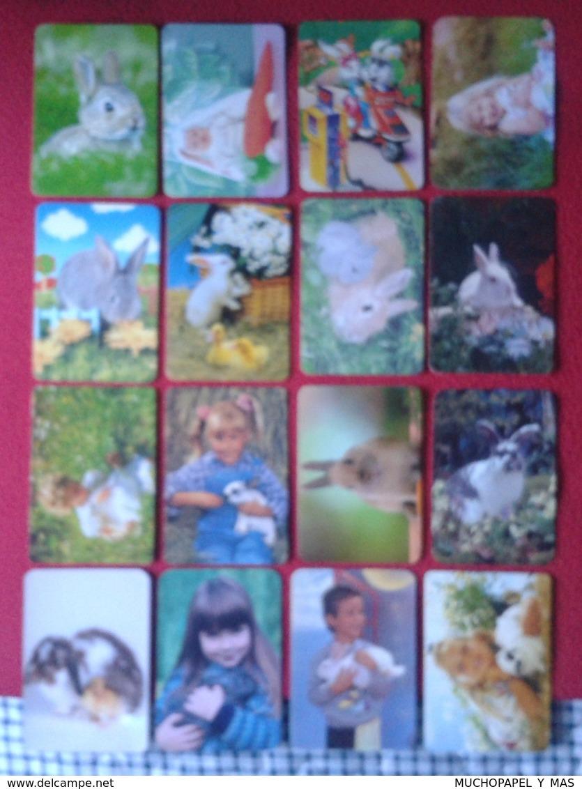 CALENDARIO DE BOLSILLO CALENDAR RABBIT LAPIN LIÈVRE HARE HASE LIEBRE CONEJO RABBITS CONEJOS LOTE DE 16 LOT CALENDARIOS - Calendarios