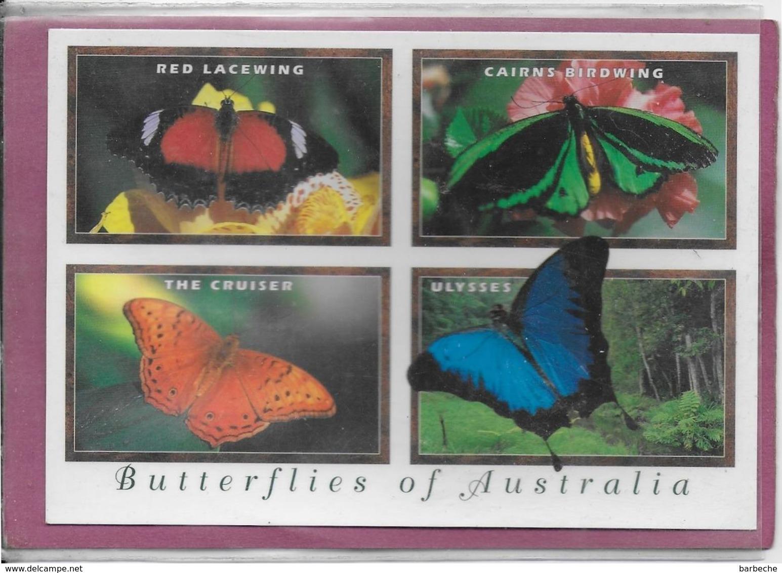 BUTTERFLIES OF  AUSTRALIA - Australie