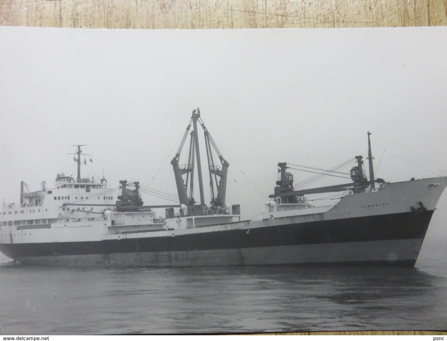 LINGUIST  Harrison Line - Comercio