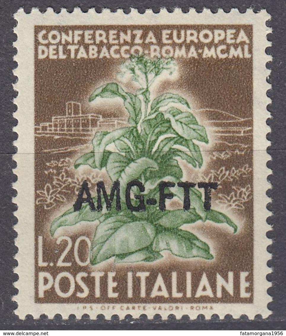 TRIESTE  Zona A AMG-FTT - 1950 - Yvert 80 Usato. - 7. Triest
