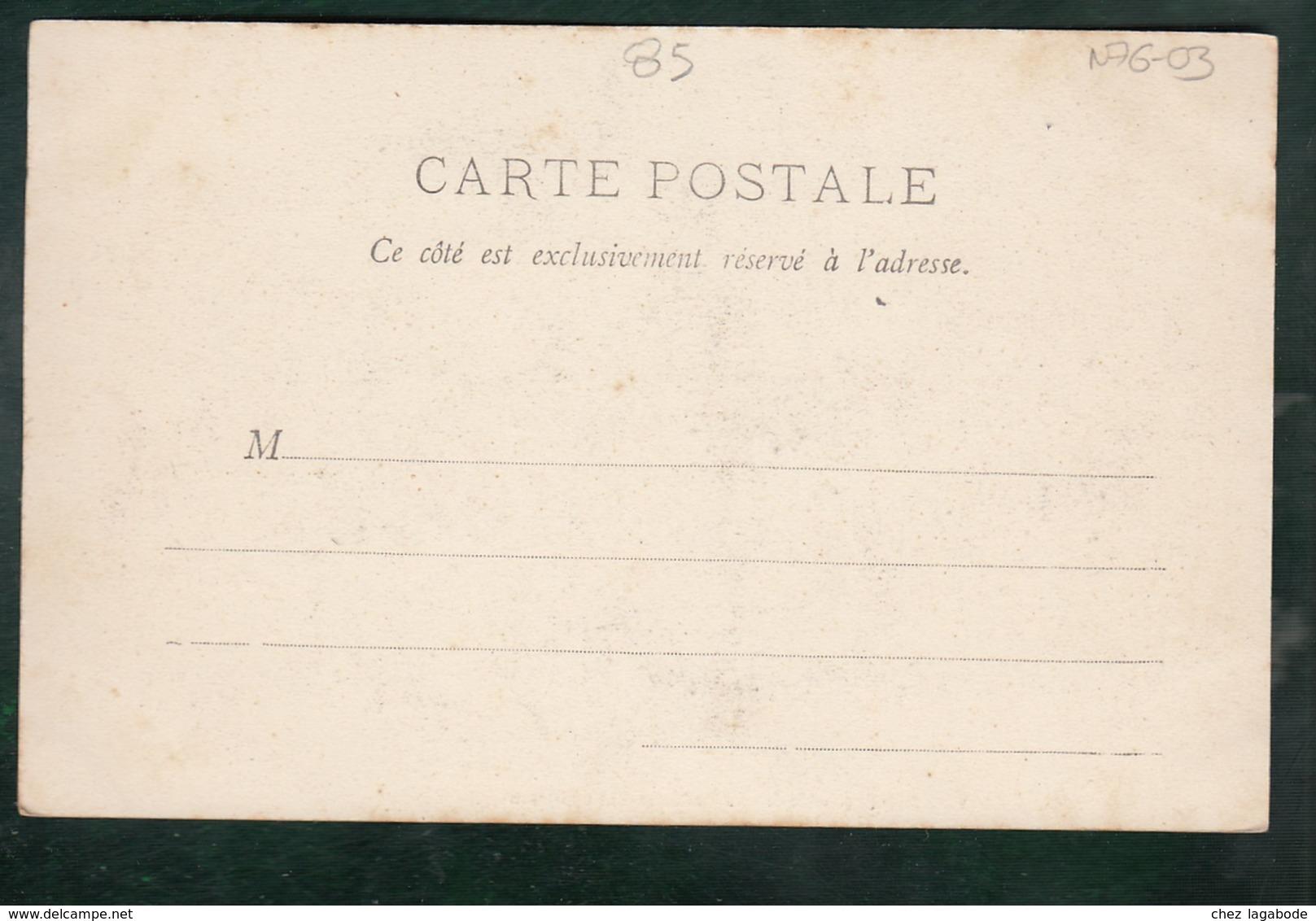 CPA (85) Vouvent  -  La Vallée Au Petit-Château - France
