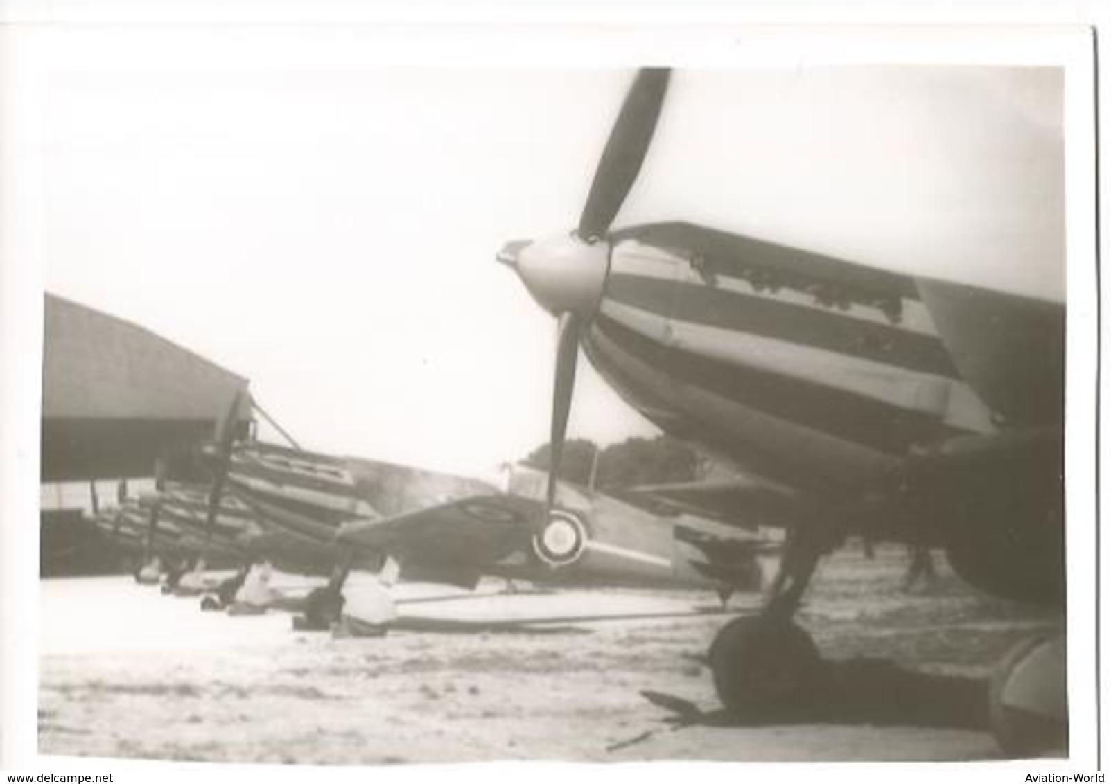 PHOTO AVION DEWOITINE D520     12X8CM - 1946-....: Era Moderna