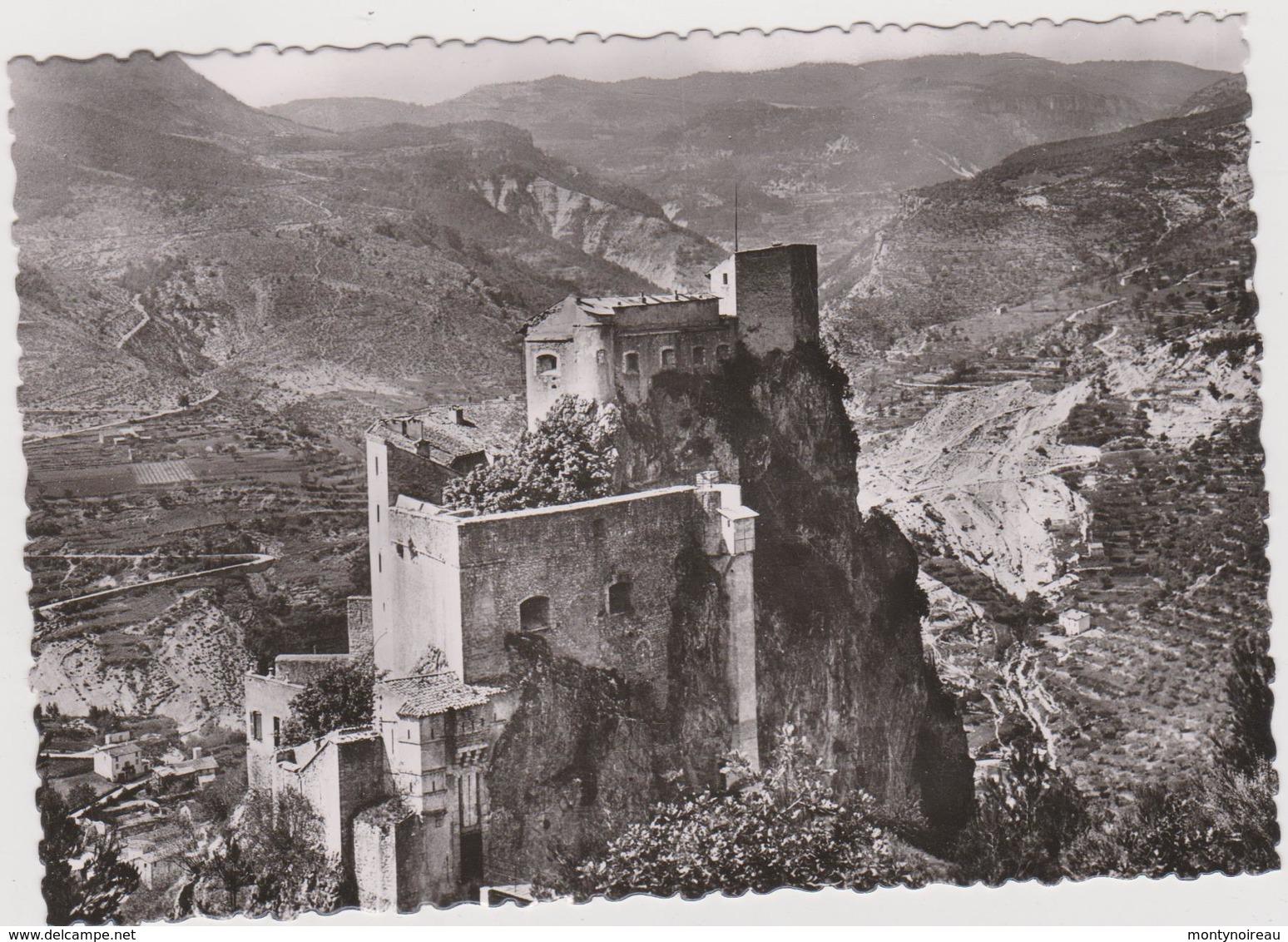 DAV :   Alpes De Haute Provence :  ENTREVAUX : Vue Le  Fort  Vauban - Frankrijk