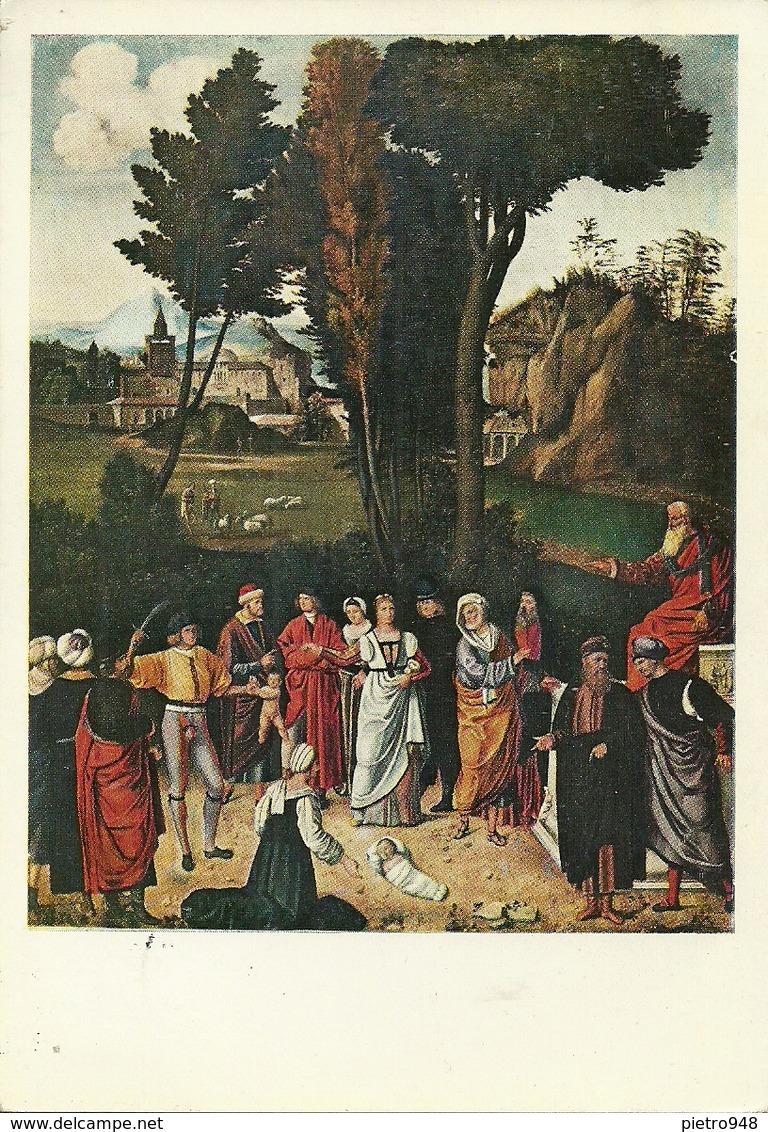 """Firenze (Toscana) Galleria Uffizi """"Il Giudizio Di Salomone"""" Giorgione - Firenze"""