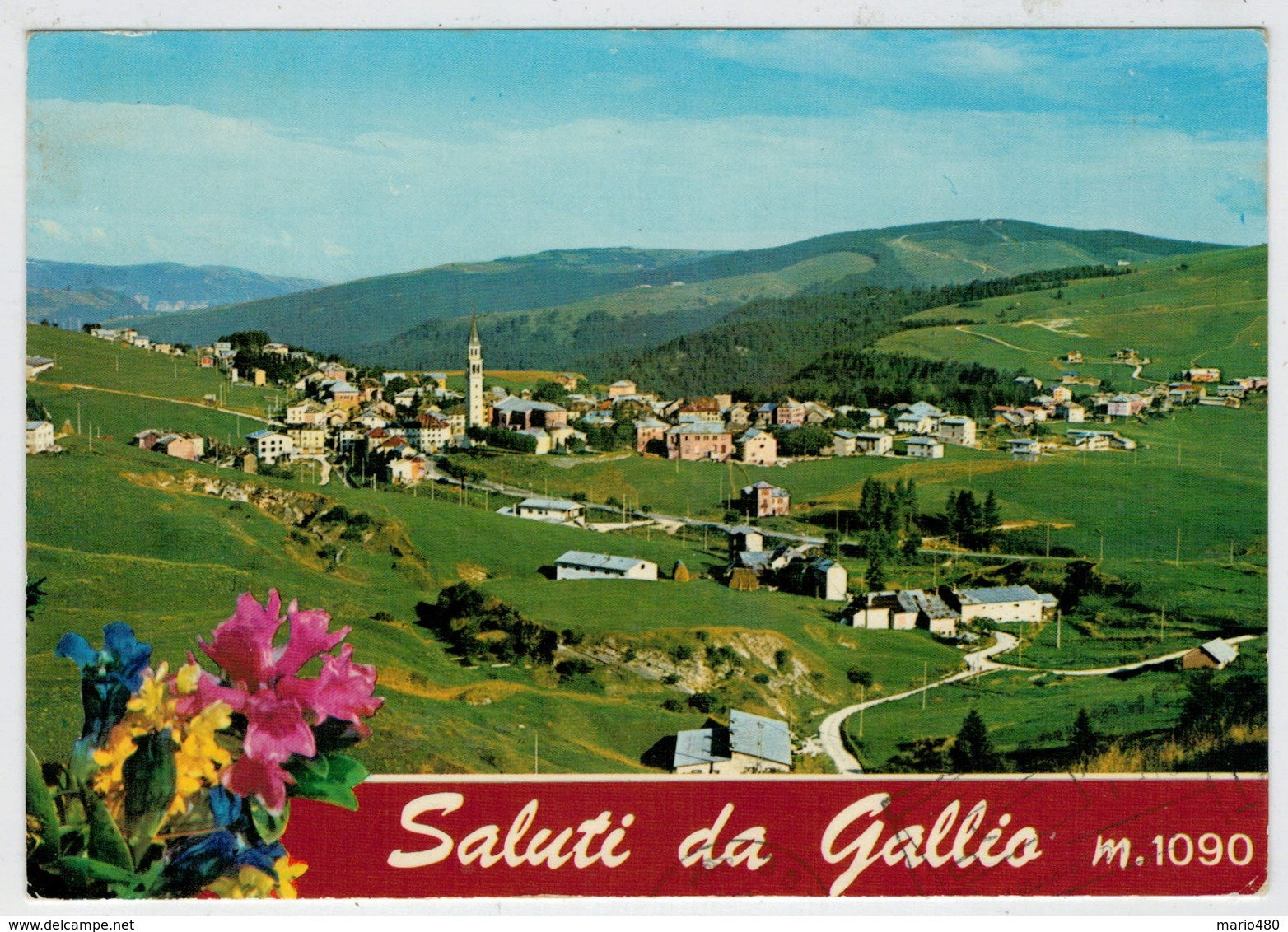SALUTI  DA  GALLIO  (VI)   PANORAMA  CON VEDUTA  DEL M. SISEMOL                   (VIAGGIATA) - Italia