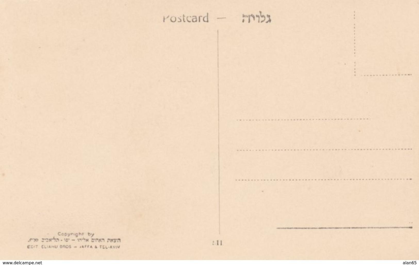 Tel Aviv Israel, Allenby Street Scene, C1930s/40s Vintage Eliahu Bros. Postcard - Israel