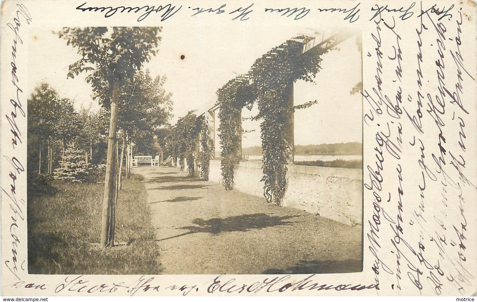 MAGDEBURG - Jardins Au Bord De L'Elbe, Carte Photo En 1918. - Magdeburg