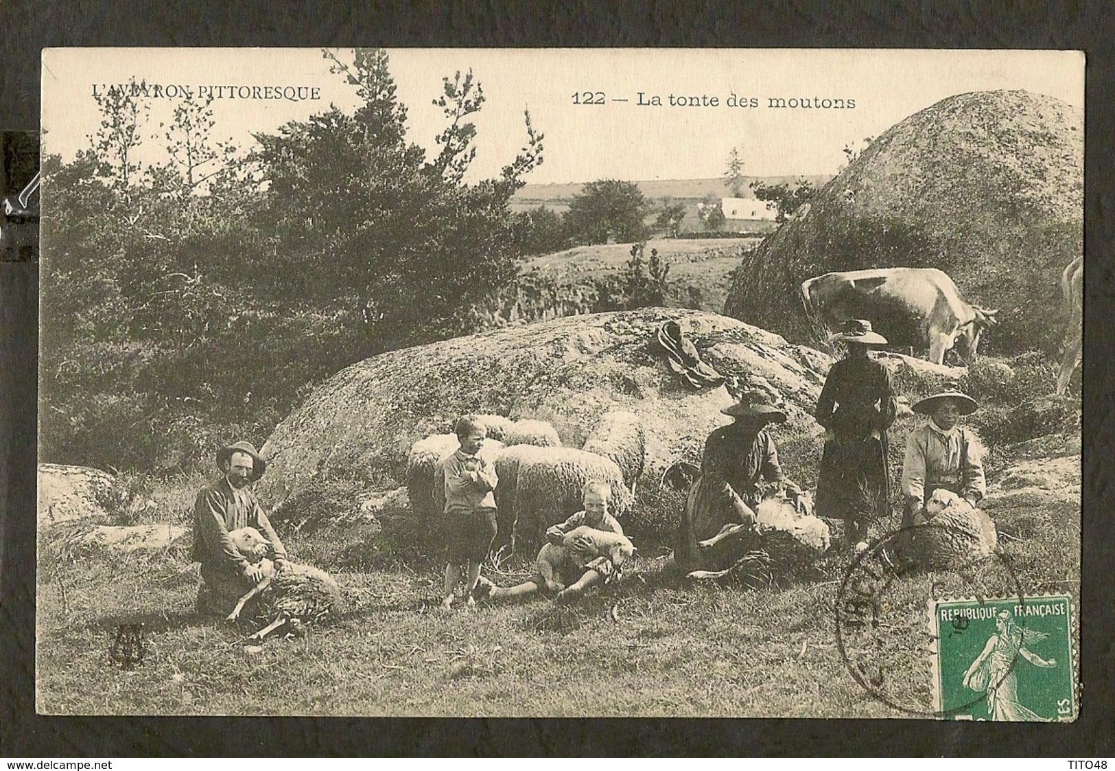 CP-l'AVEYRON PITTORESQUE - La Tonte Des Moutons - France