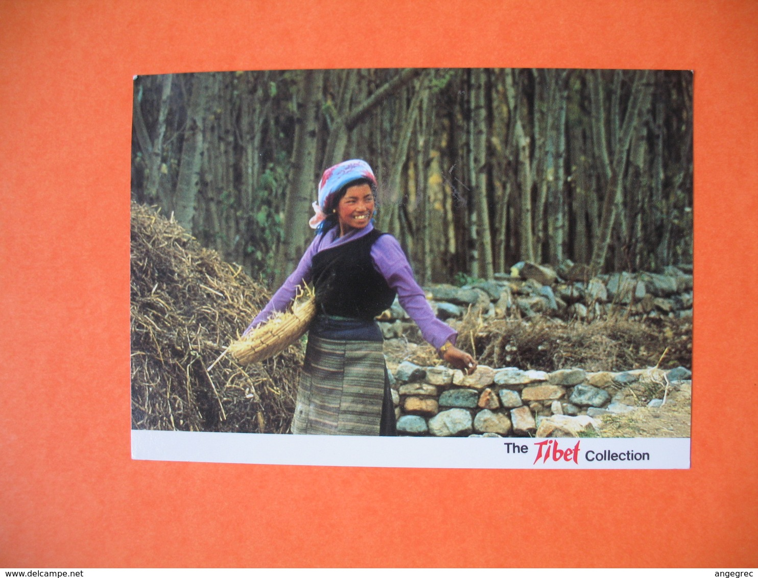 CPA  The Tibet - Tibetan Girl  1992 - Tibet
