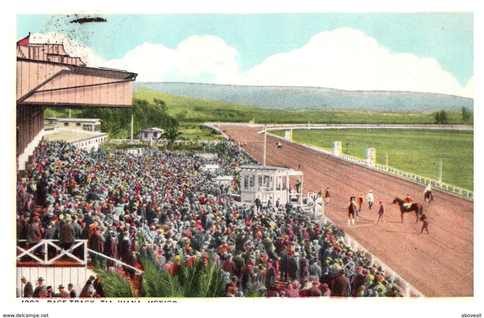 Mexico Tiajuana , Horse Race Track - Mexique