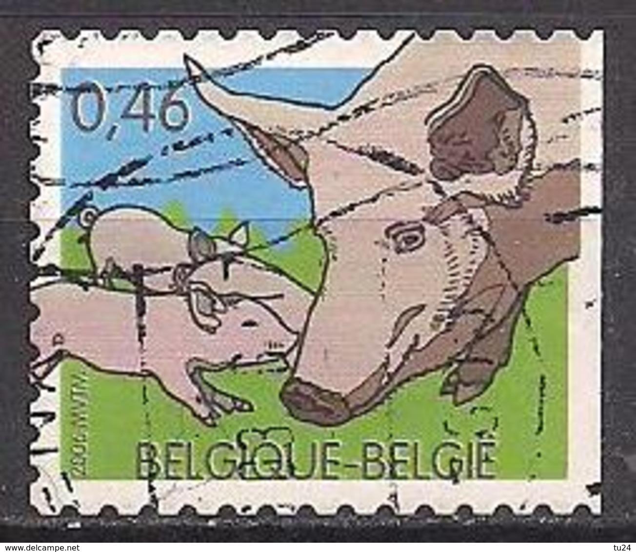 Belgien  (2006)  Mi.Nr.  3532  Gest. / Used  (10af60) - Belgium