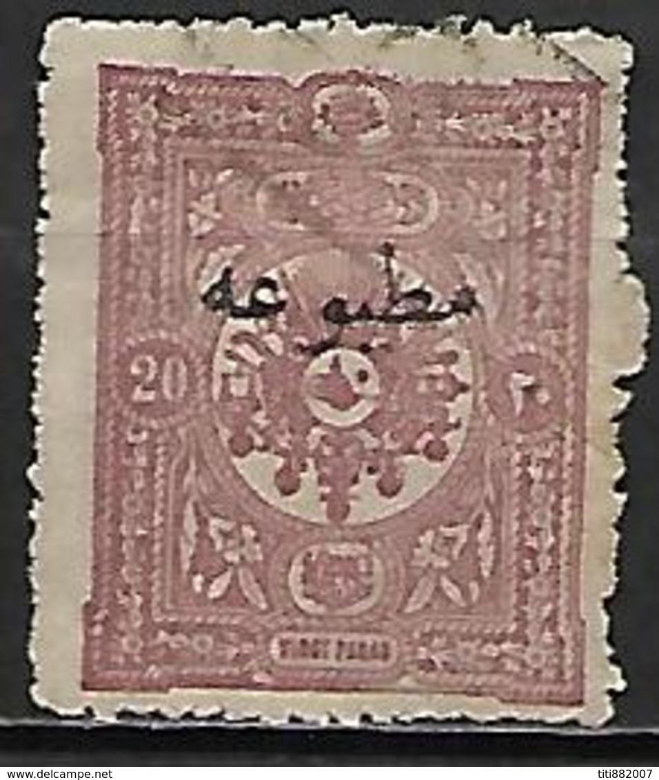 TURQUIE    -   Pour Imprimés   -   1894.   Y&T N° 13 Oblitéré - Used Stamps