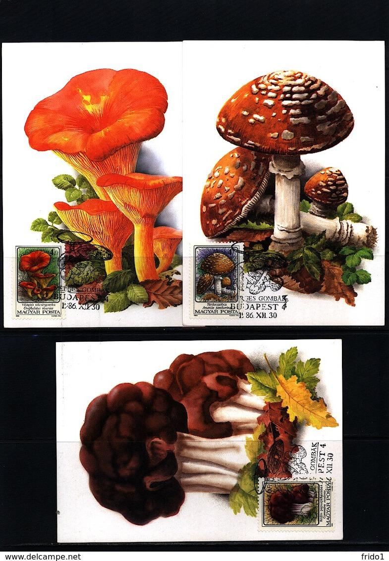 Hungary 1986 Mushrooms Maximumcards - Pilze