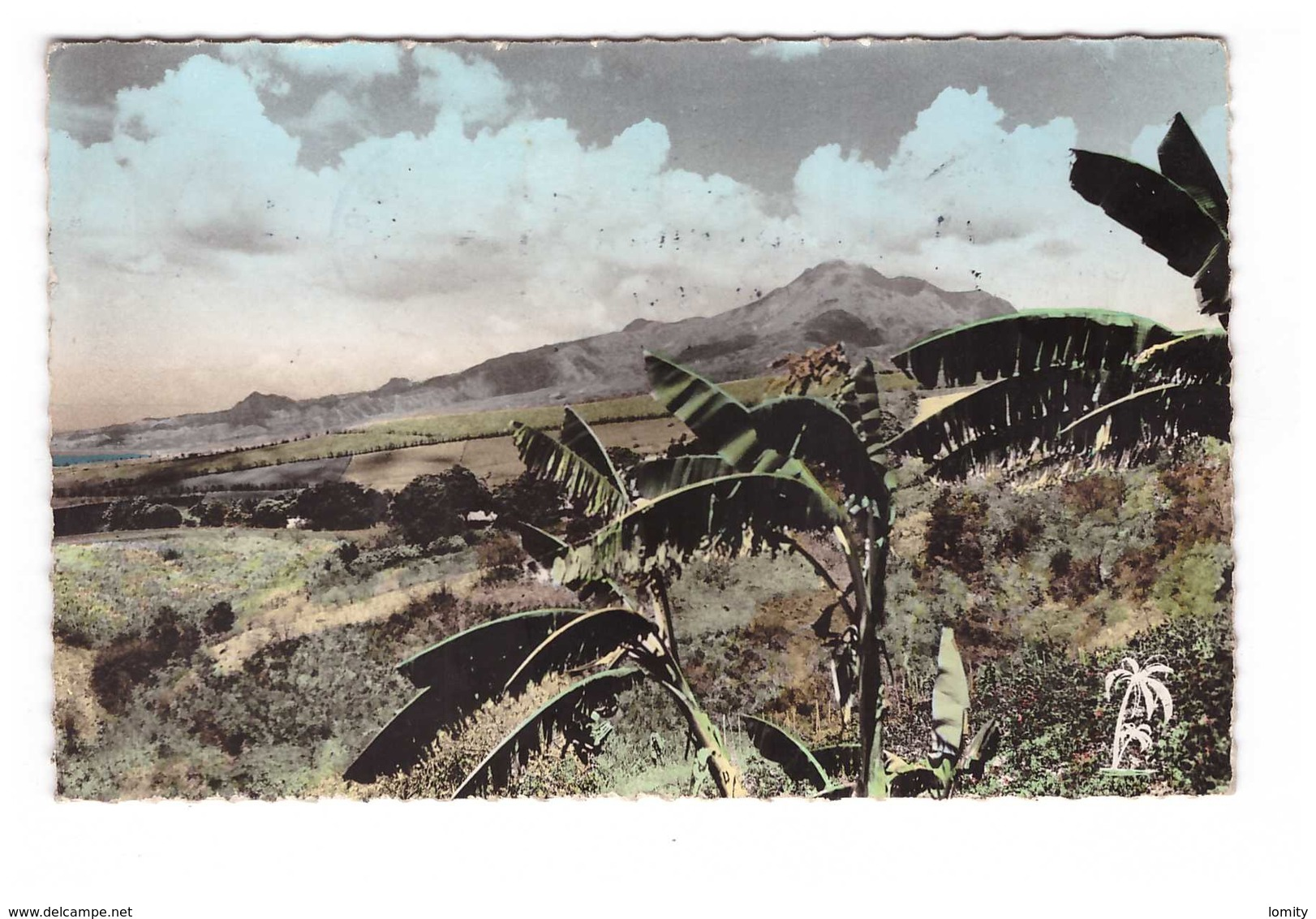 Martinique La Montagne Pelée Vue Du Morne Vert CPSM PF - Martinique