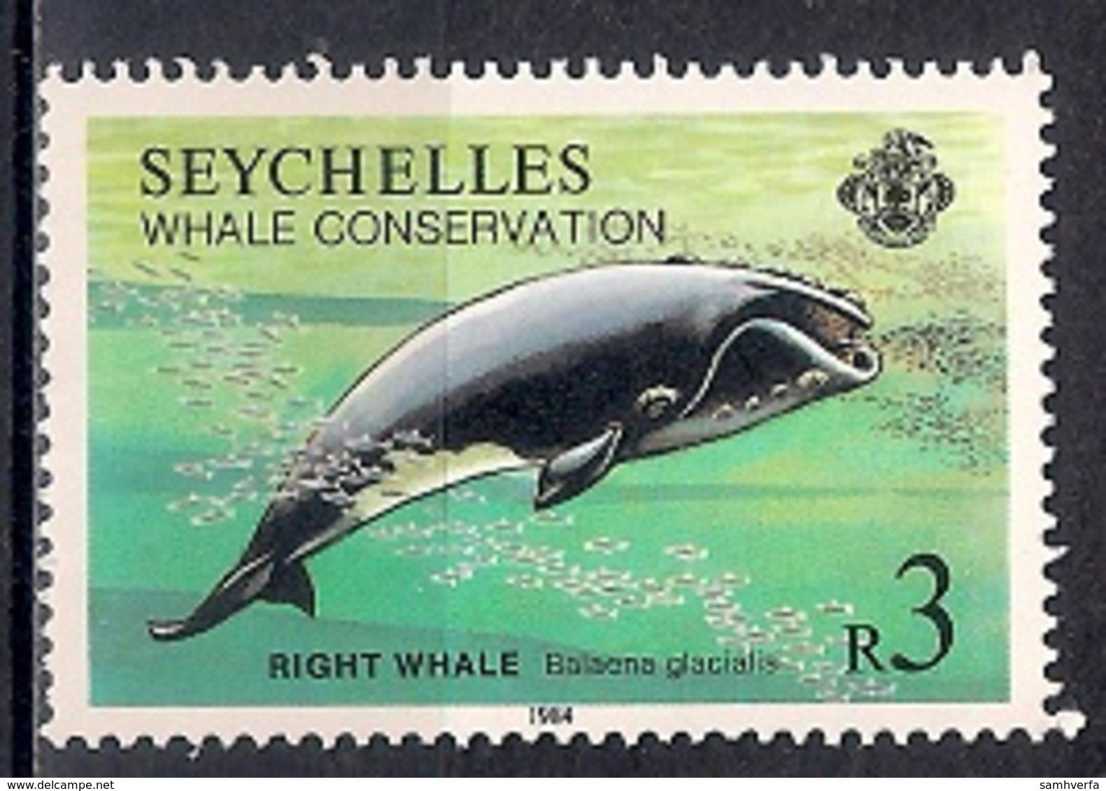 Seychelles 1984 -  Whale Conservation - Seychelles (1976-...)