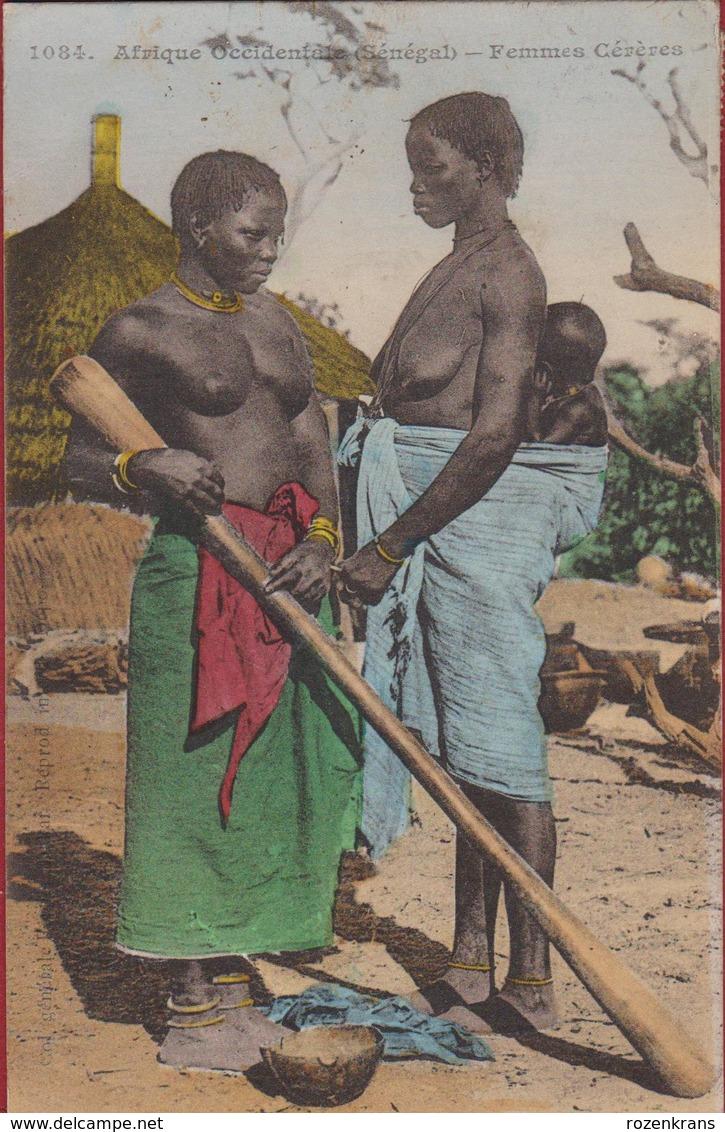 Senegal 1916 Femmes Cereres Aux Seins NUS Nu Afrique Occidentale Etnique Etnic Africa Naked Etnisch Naakt - Sénégal