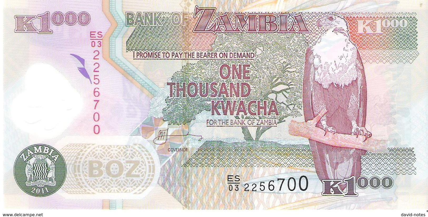 Zambia - Pick 44h - 1000 Kwacha 2011 - Unc - Zambie