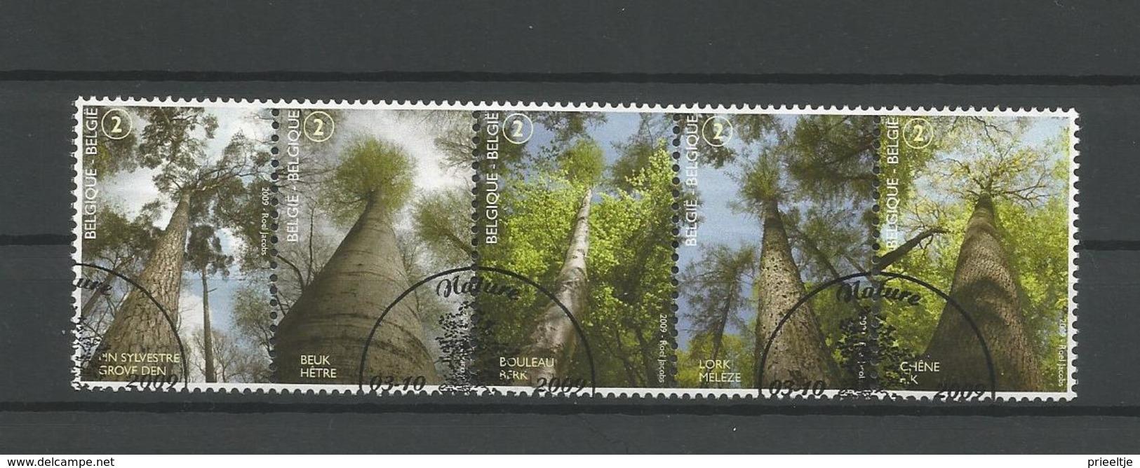 Belgium 2009 Forest Strip OCB 3951/3955 (0) - Belgien