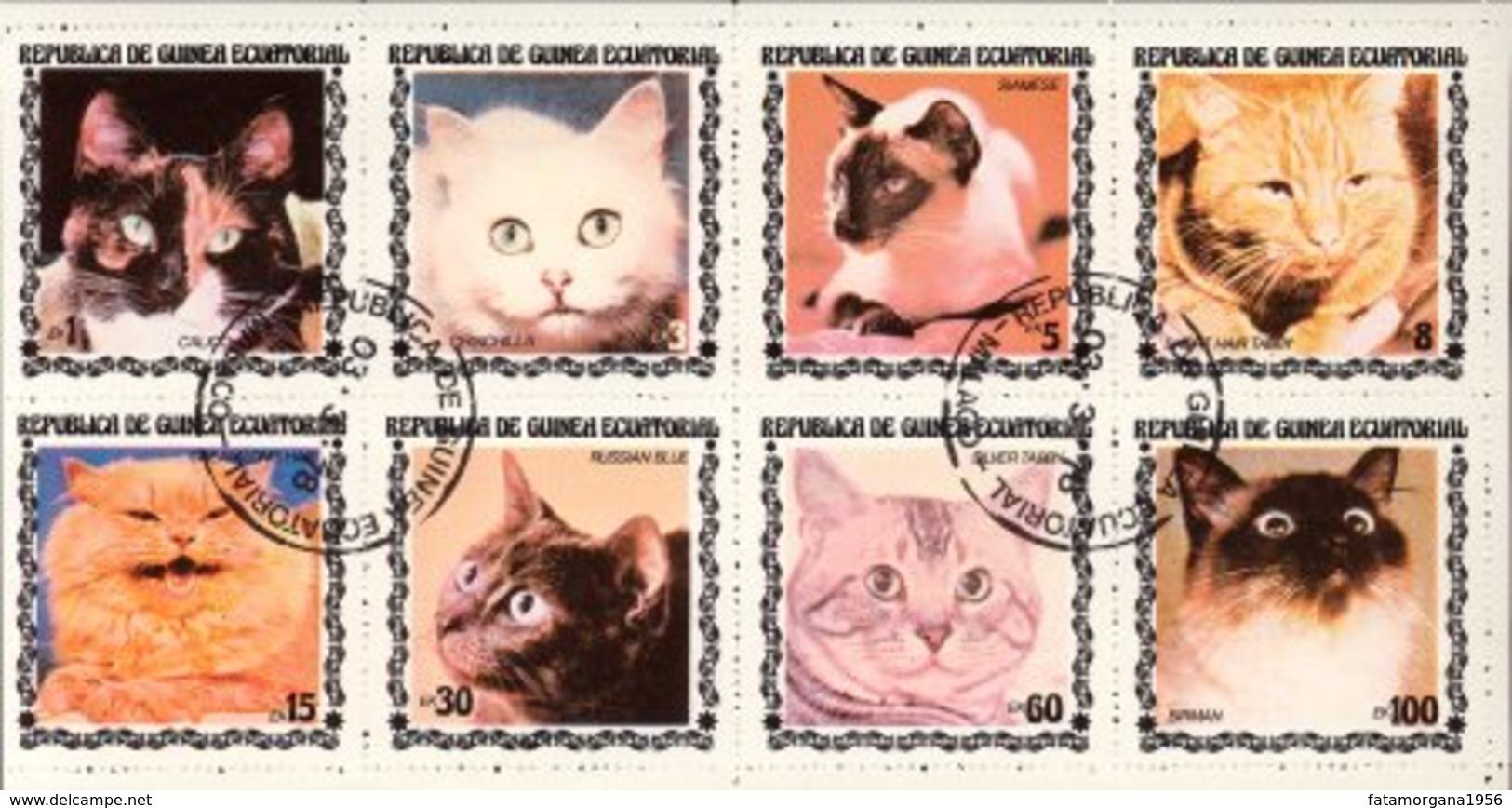 GUINEA EQUATORIALE - 1977 - Otto Valori Raffiguranti Gatti Di Razze Diverse In Minifoglio Usato - Mm. 95 X 188. - Guinea Equatoriale