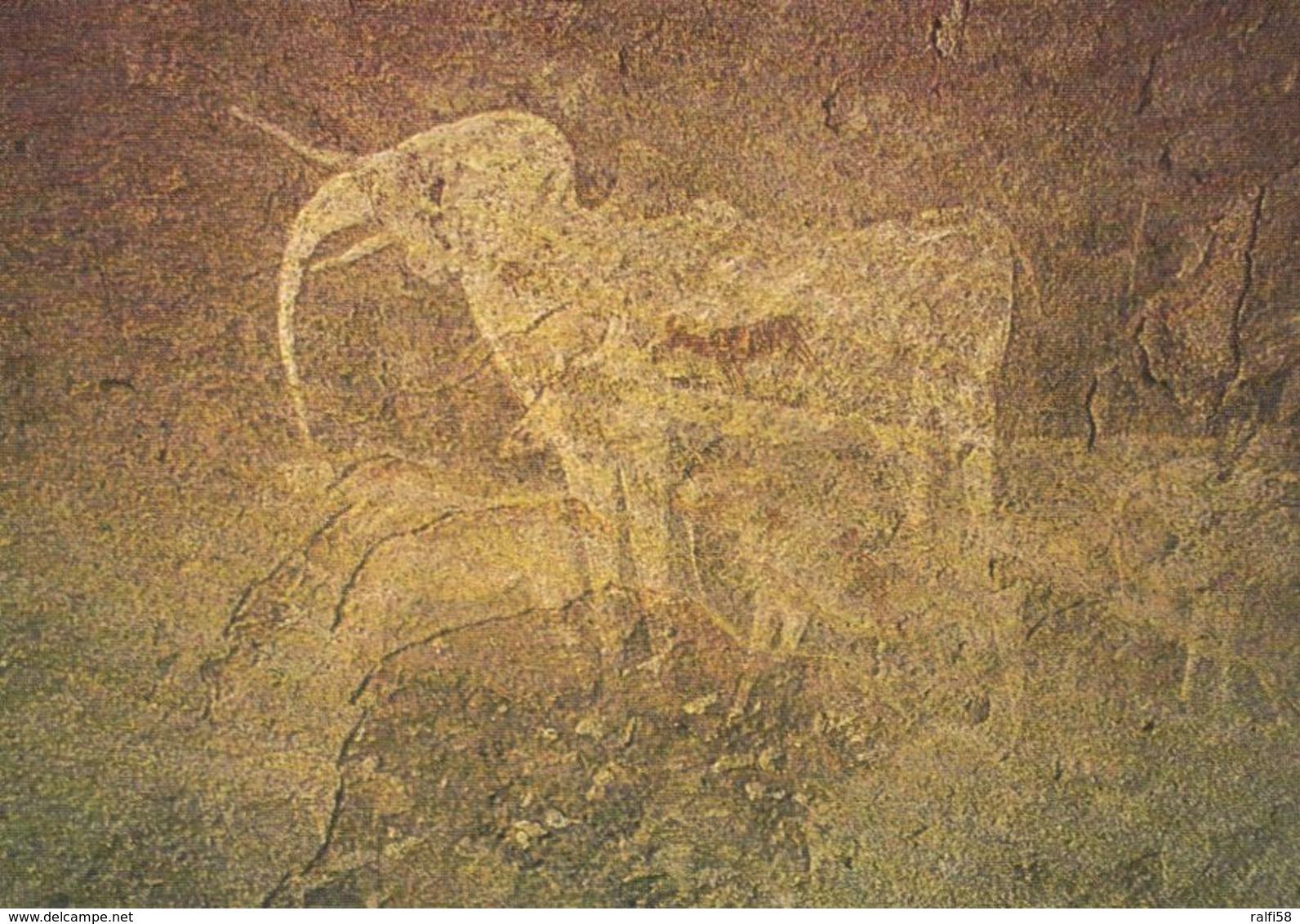 1 AK Namibia * Der Weiße Elefant In Der Phillips-Höhle (Phillips Cave) Felsmalerei Im Erongogebirge Ca. 5000 Jahre Alt - Namibie
