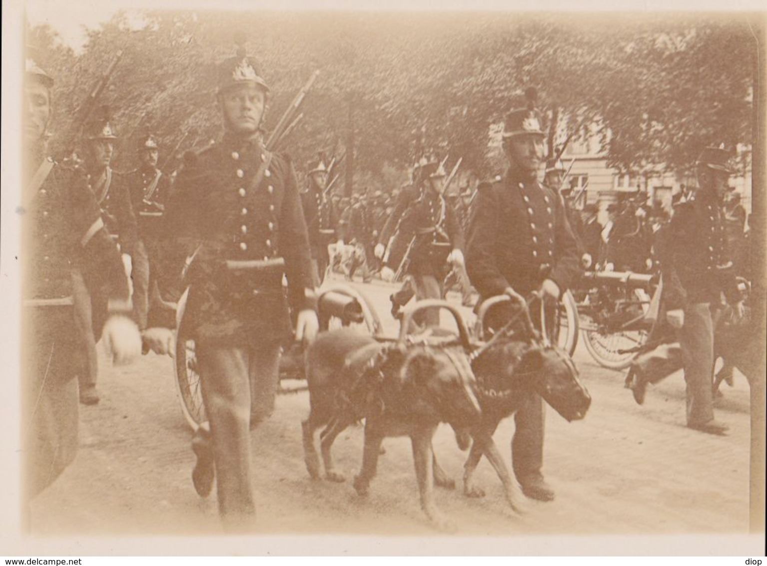 Photo Anonyme Vintage Snapshot Militaire Military Homme Man Garde Parade Chien Dog - Guerre, Militaire