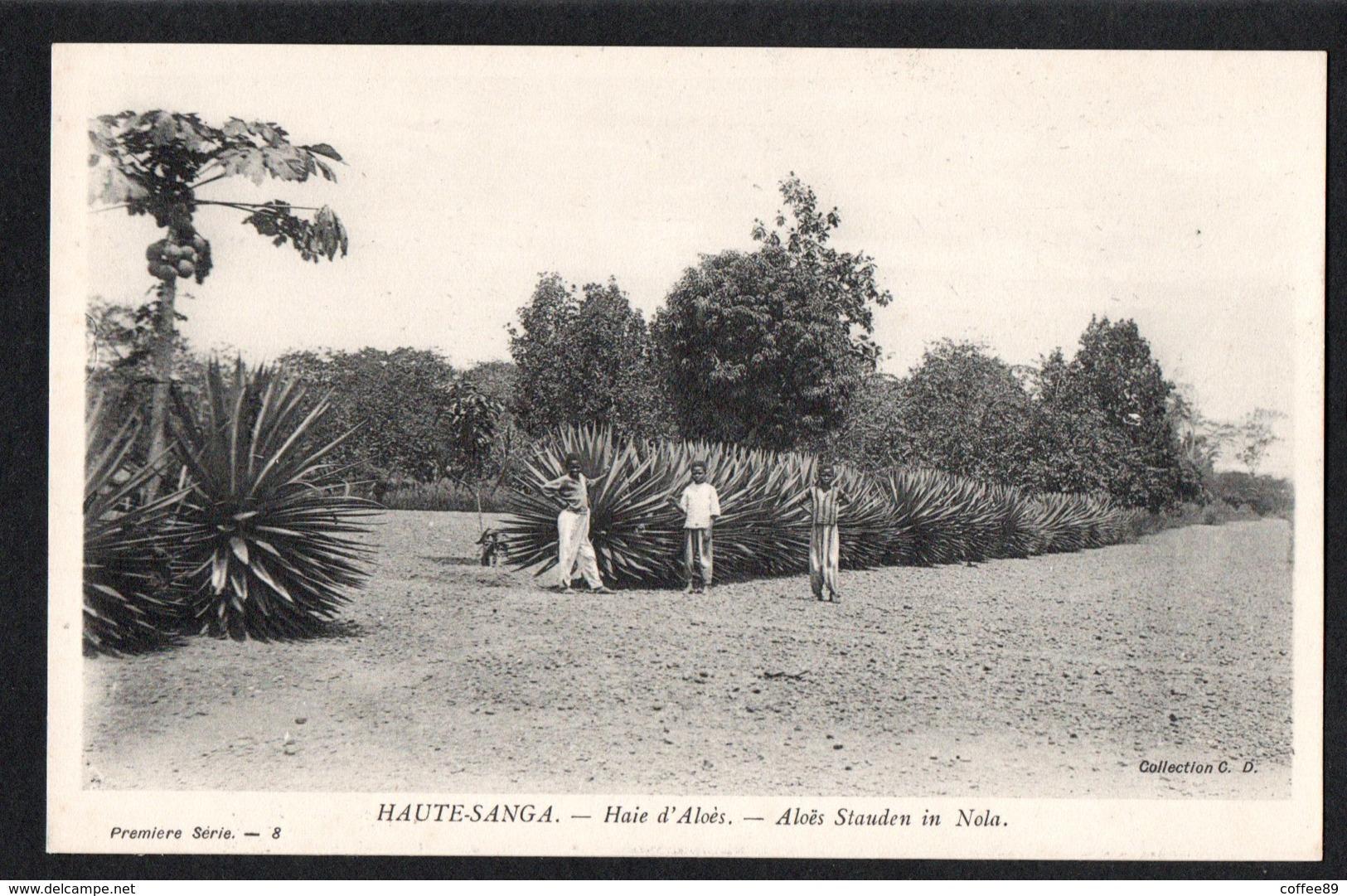 REPUBLIQUE CENTRAFRICAINE - HAUTE SANGA - Haie D'Aloés - Centrafricaine (République)