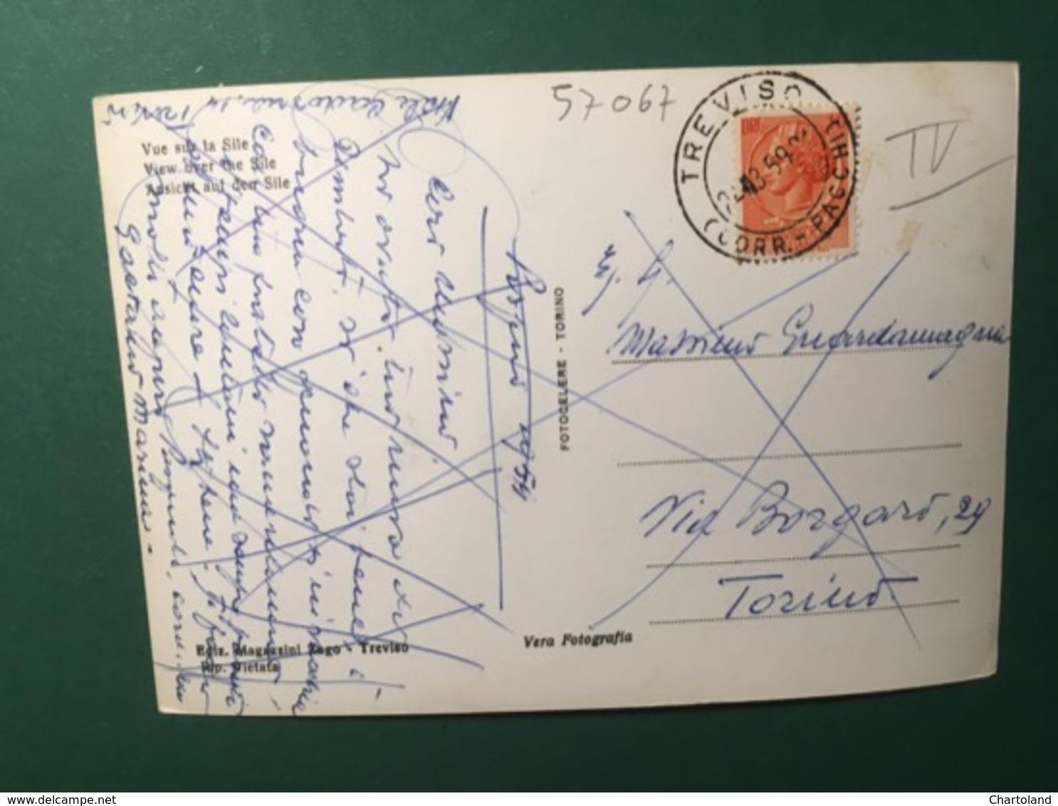 Cartolina Treviso - Veduta Sul Sile - 1959 - Treviso