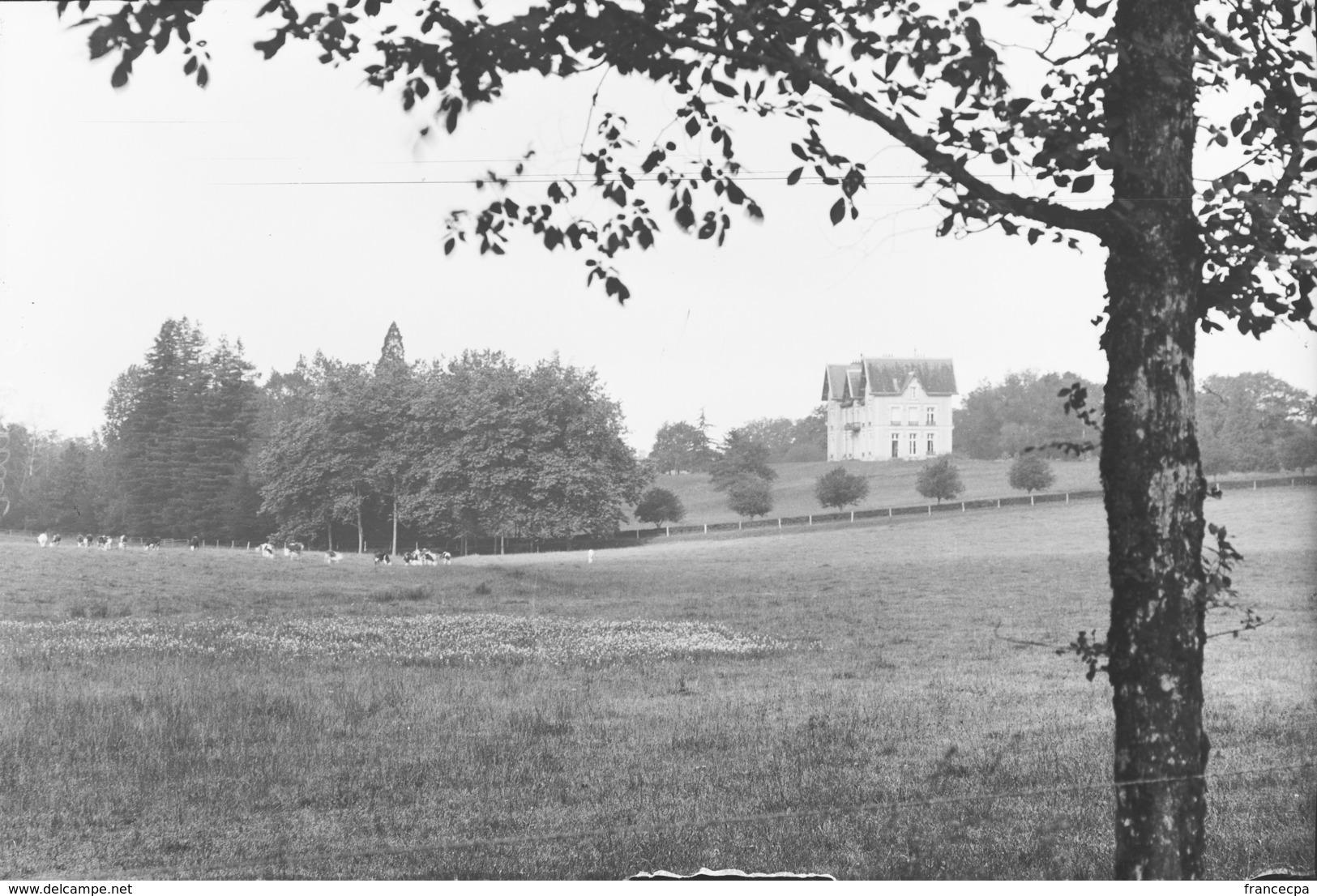 PN - 183 - CHARENTE - 16  SAINT CLAUD - Chateau De Fregnaudies - Plaques De Verre
