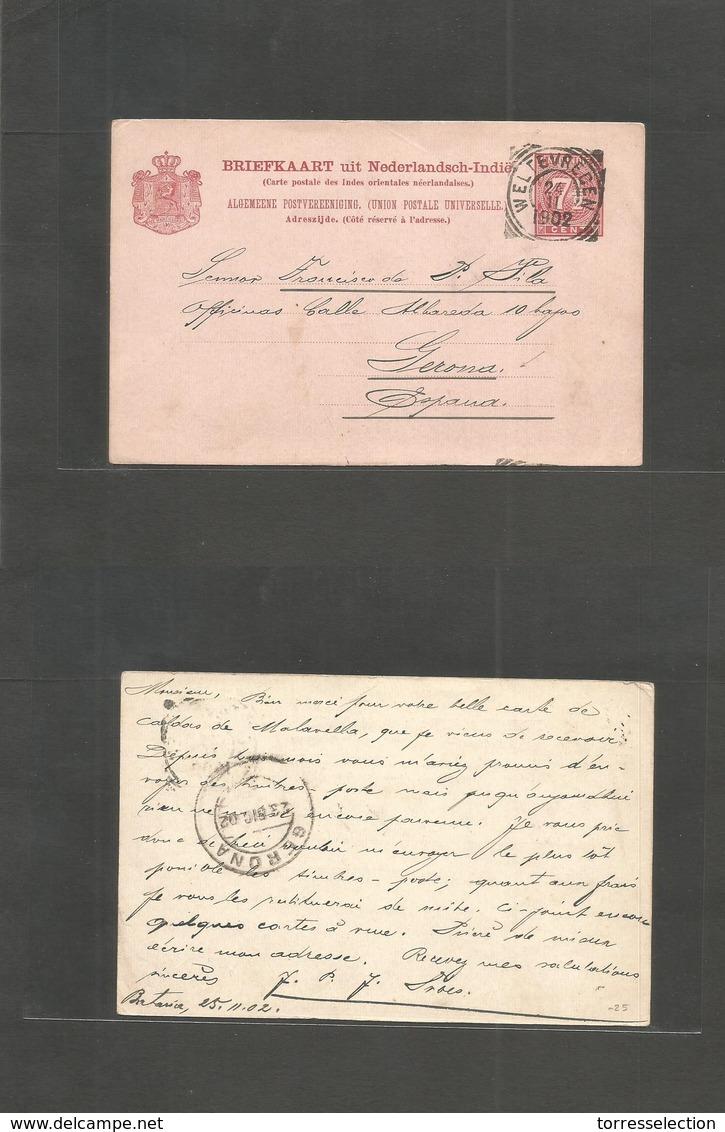 Dutch Indies. 1902 (24 Nov) Weltevreden - Spain, Gerona (23 Dic) 7 1/2c Red Stat Card. Very Rare Destination. Fine. - Indes Néerlandaises
