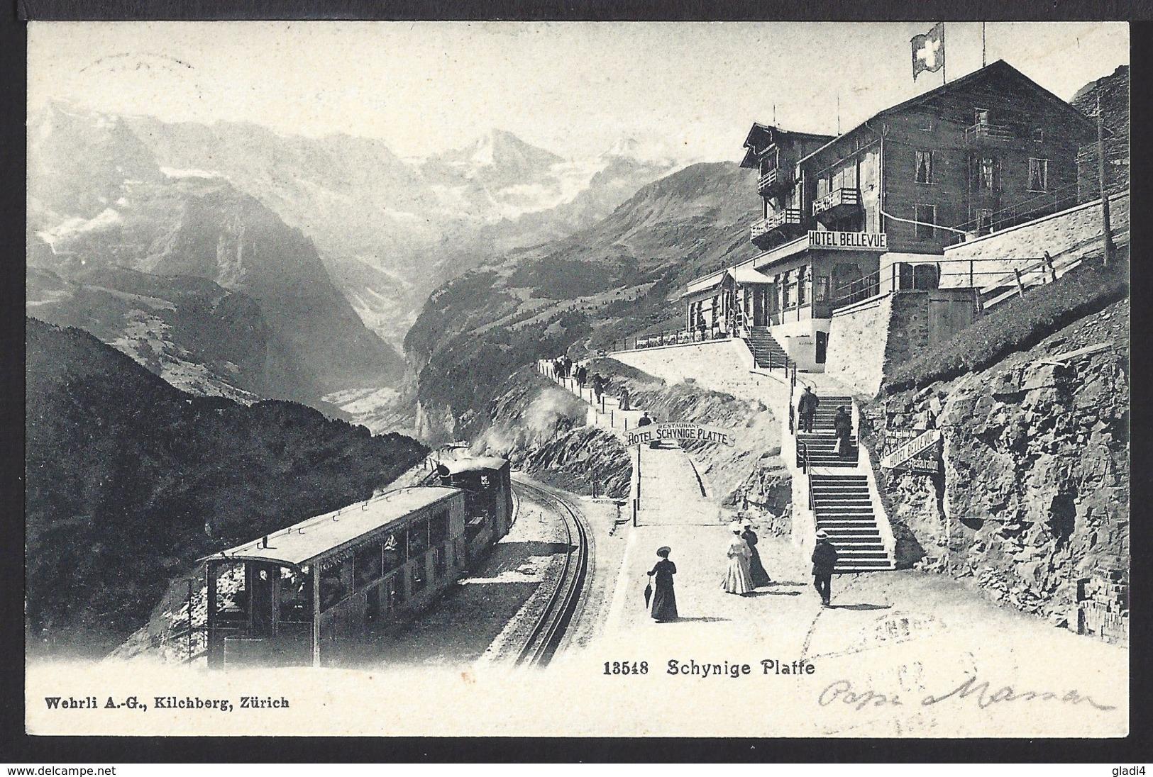 Schynige Platte - Bahnhof - Belebt - Train - Bahn - Marke Weg - BE Berne