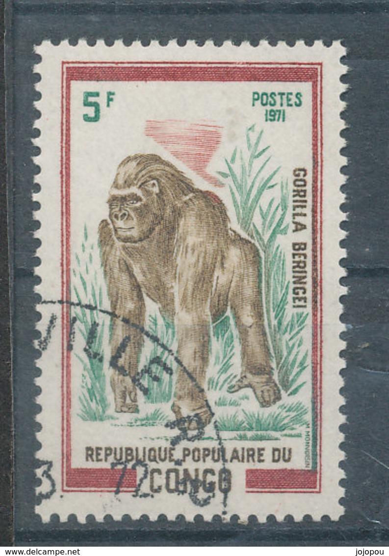 Faune - Lion - Cachet Rond - Congo - Brazzaville
