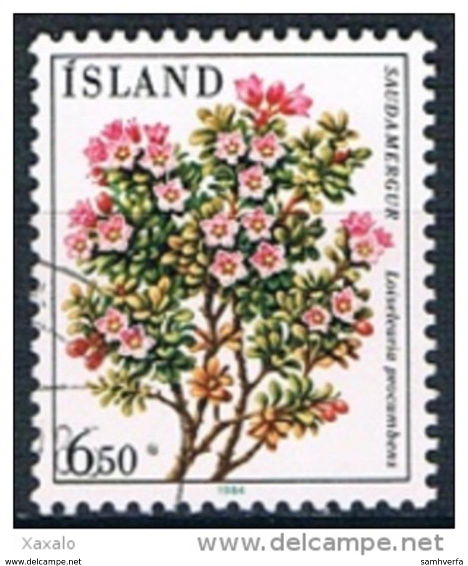 Iceland 1984 - Flowers - 1944-... Republik