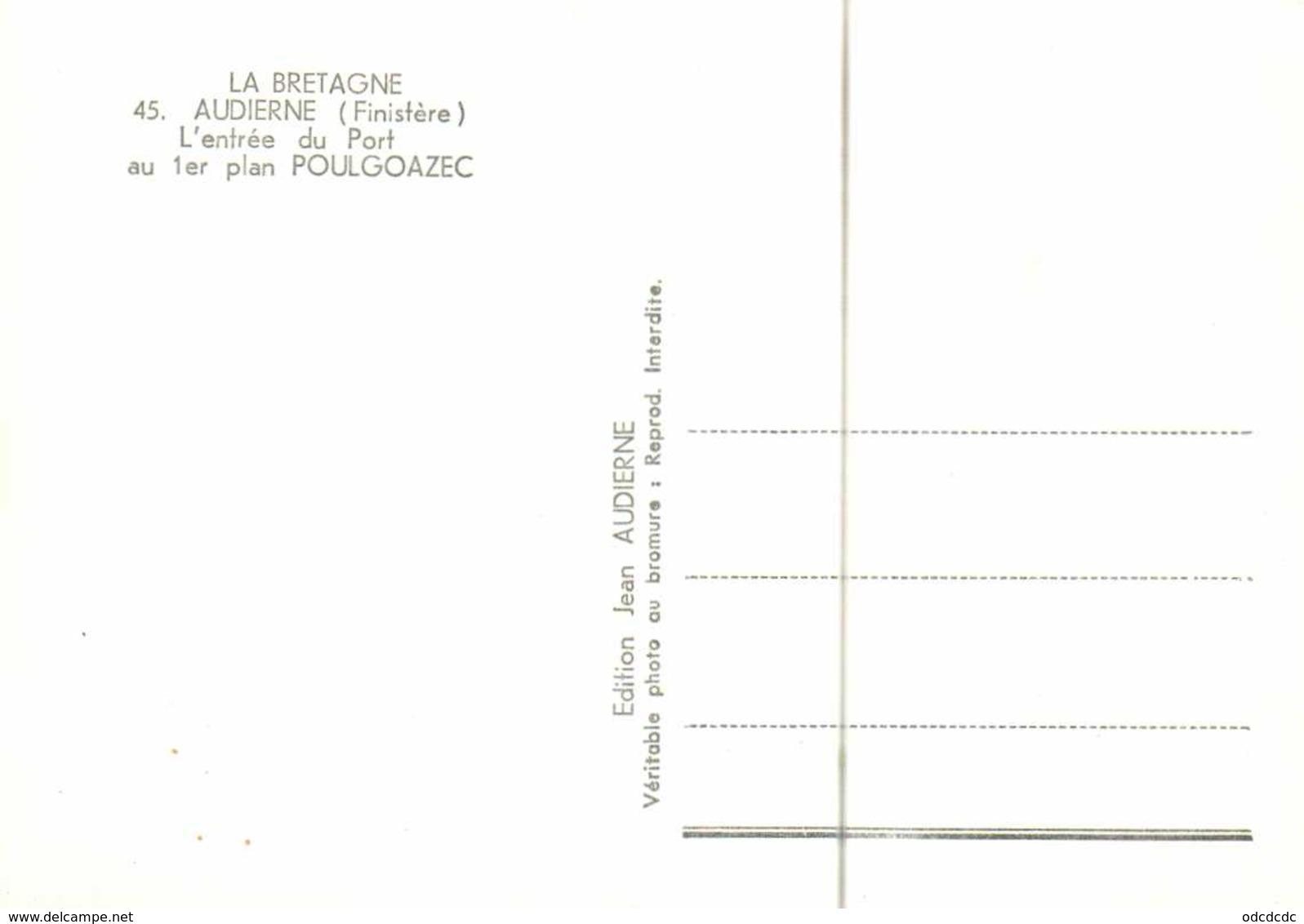 CPSM Grand Forrmat Vue Aérienne AUDIERNE  L'entrée Du Port Au 1er Plan POULGOAZEC RV - Audierne