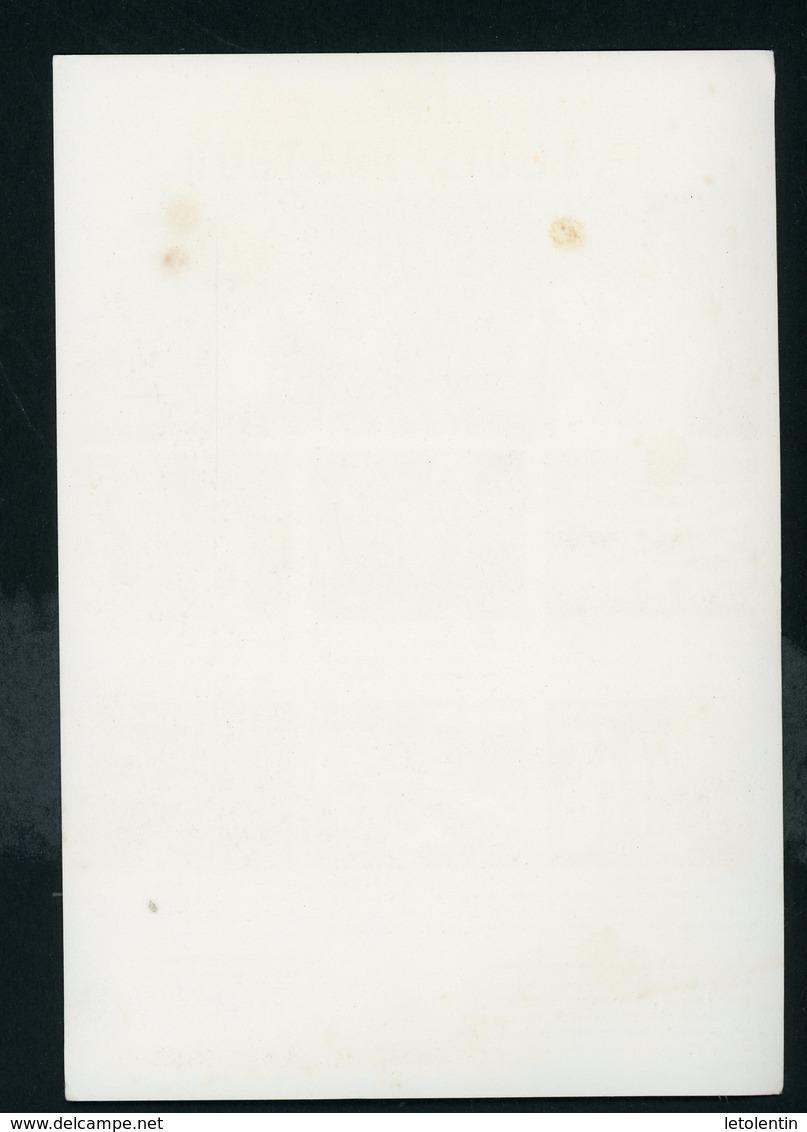 BUVARD:  LE DESTIN EXEMPLAIRE DE LOUIS PASTEUR (ANTI-ALCOOLISME) - FORMAT 14X20 Cm - Papeterie