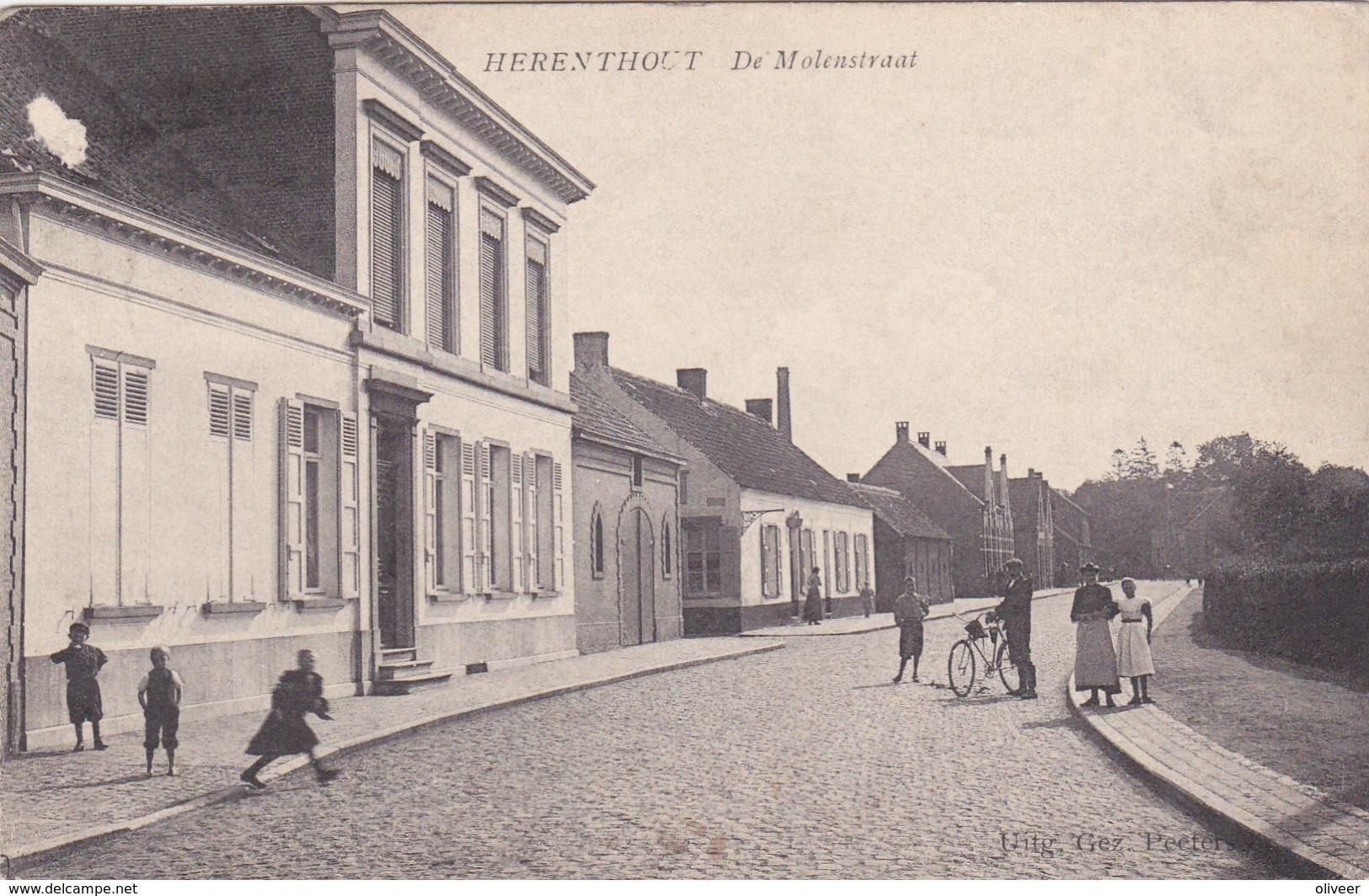 Herenthout : De Molenstraat - Herenthout
