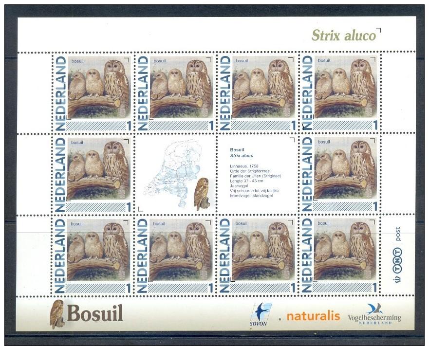 NETHERLANDS COMPLETE SHEET 10v 2011 / 2014 BIRD BIRDS OISEAU BOSUIL UIL TAWNY OWL HIBOU * MNH - Neufs