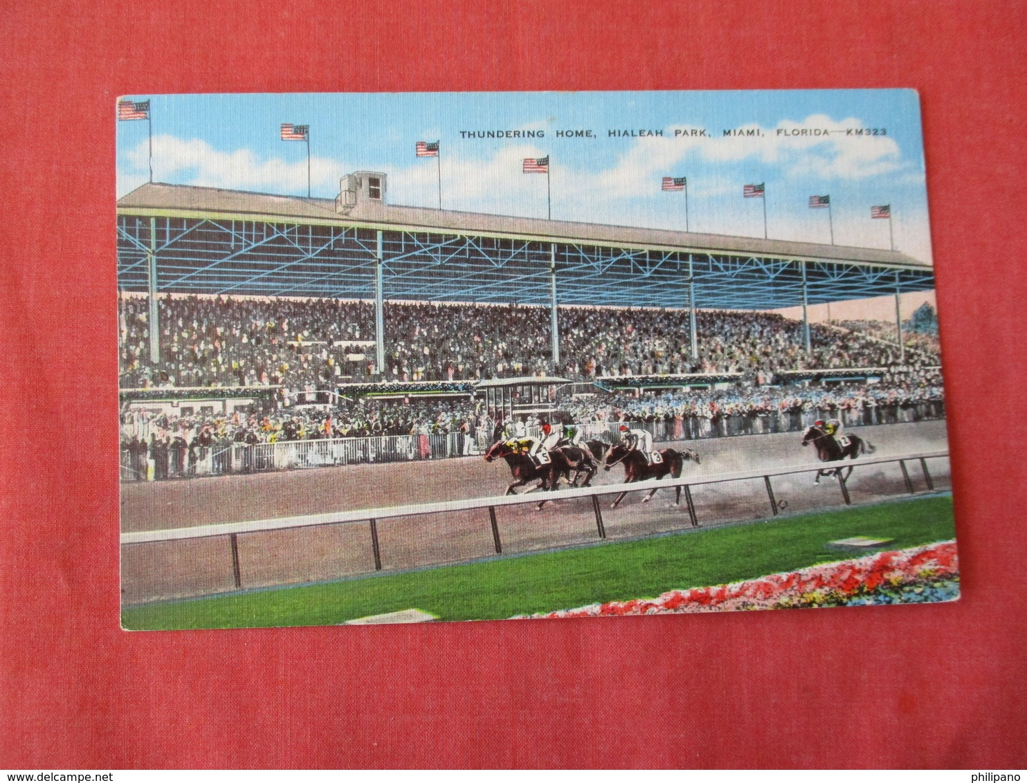 Horse Racing   Hialeah Park Miami Florida     Ref 3170 - Cartes Postales
