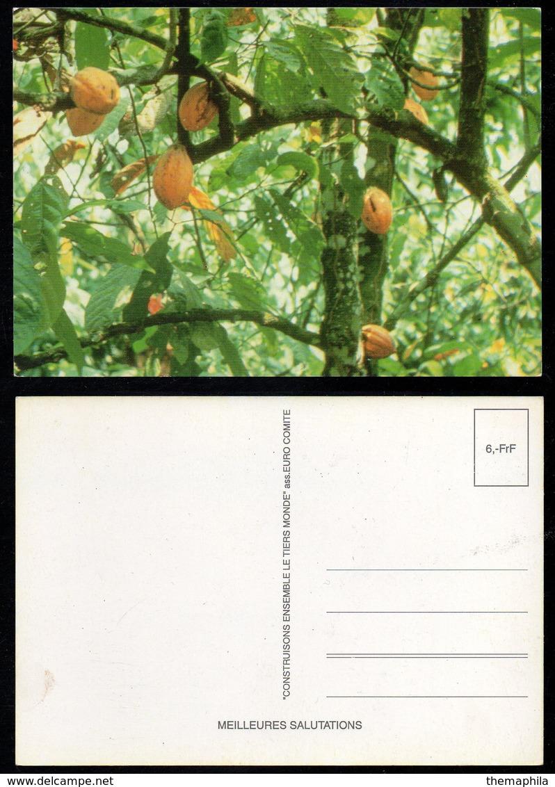 CACAO - COCOA - CHOCOLAT  / CARTE POSTALE ILLUSTREE (ref CP693) - Cultures