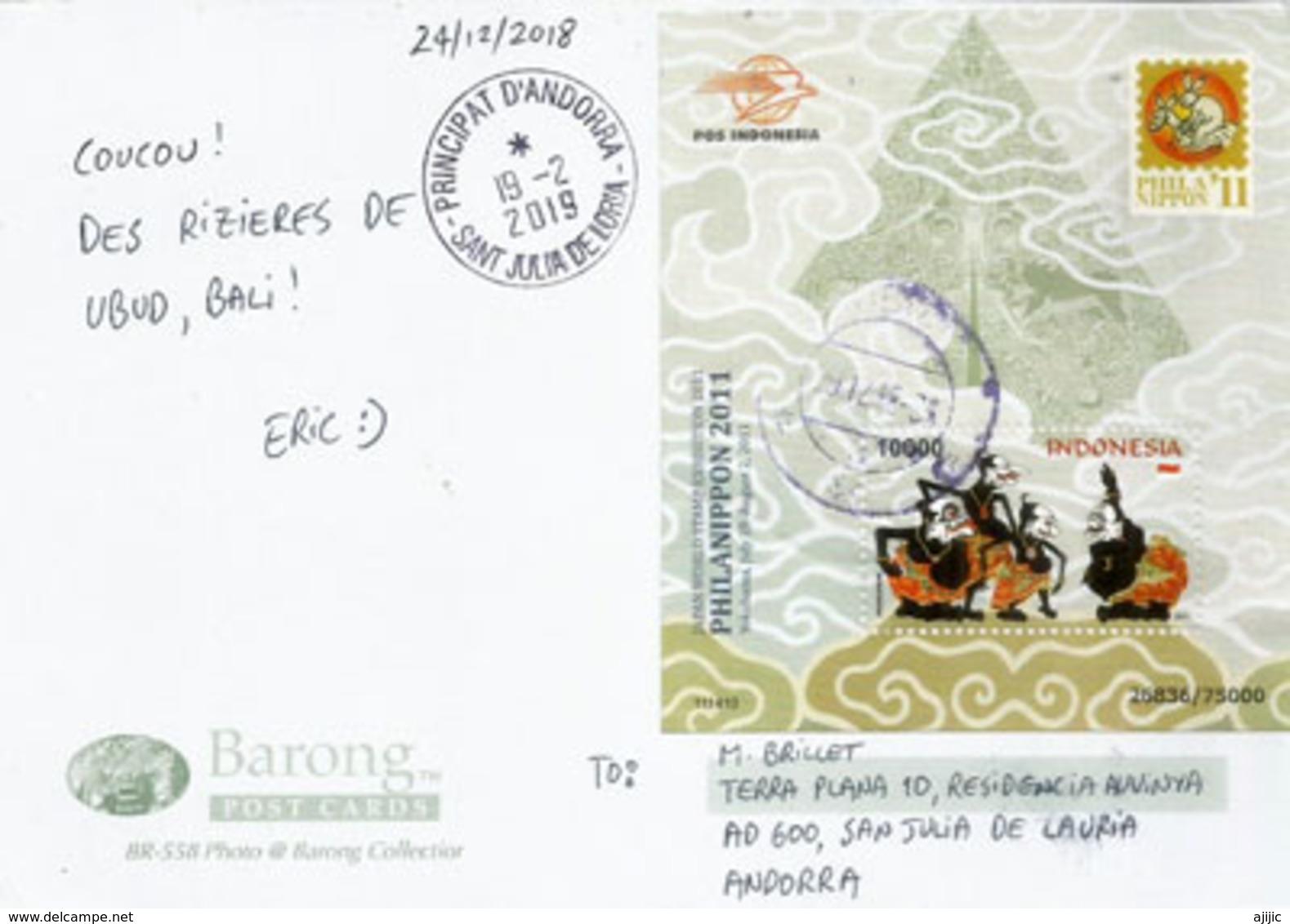 Culture Du Riz En Terrasses à BALI, Belle Carte Postale BALI, Affranchi Avec B-F Phila-Nippon Indonesia, Envoyée Andorra - Cultures