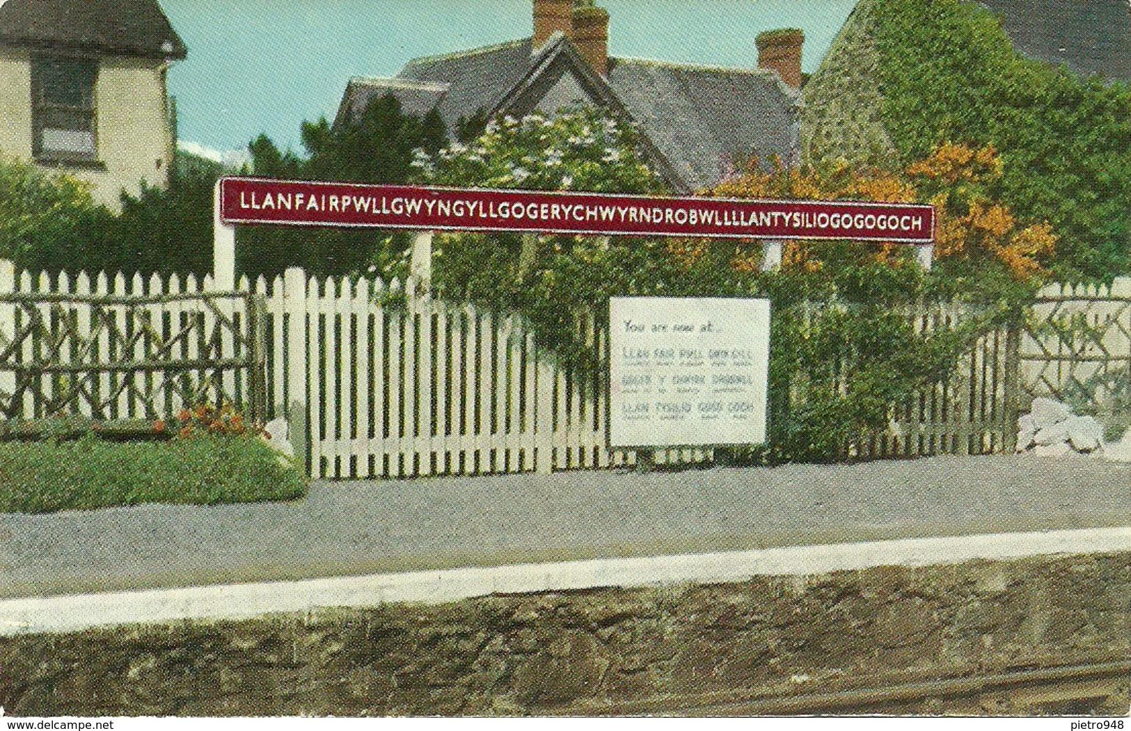 Llanfairpwllgwyngyllgogerychwyrndrobwllllantysiliogogogoch (Wales, Galles) Cartello Stazione Ferroviaria - Galles